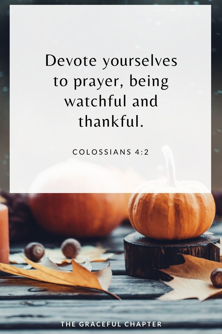 thanksgiving bible verse: Devote yourselves to prayer, being watchful and thankful. Colossians 4:2
