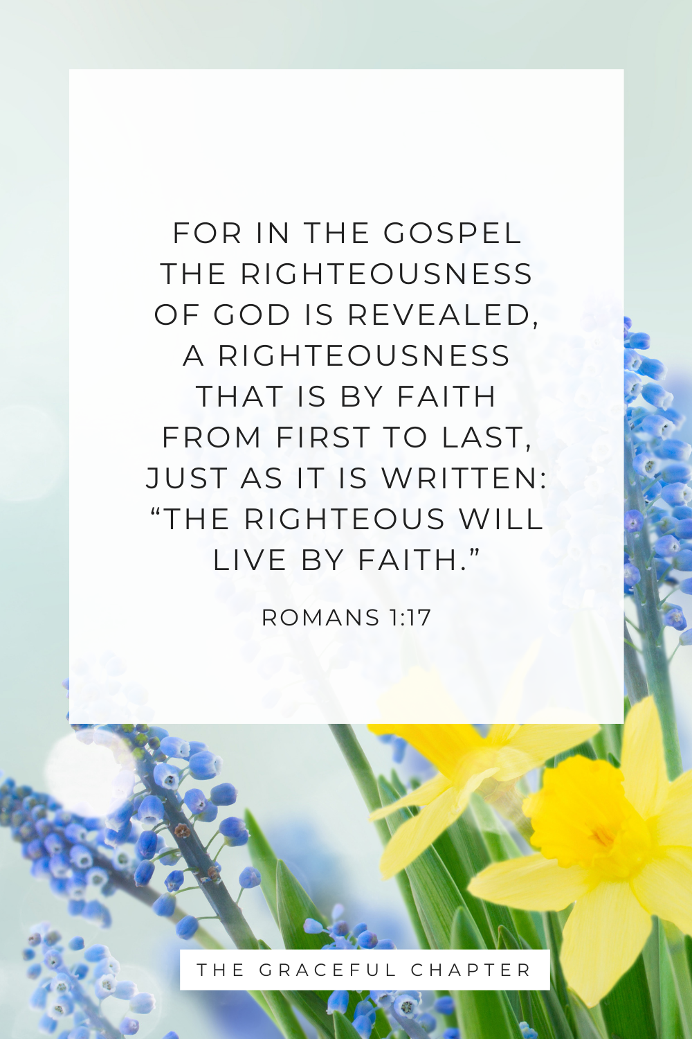 """""""The righteous will live by faith."""" Romans 1:17"""