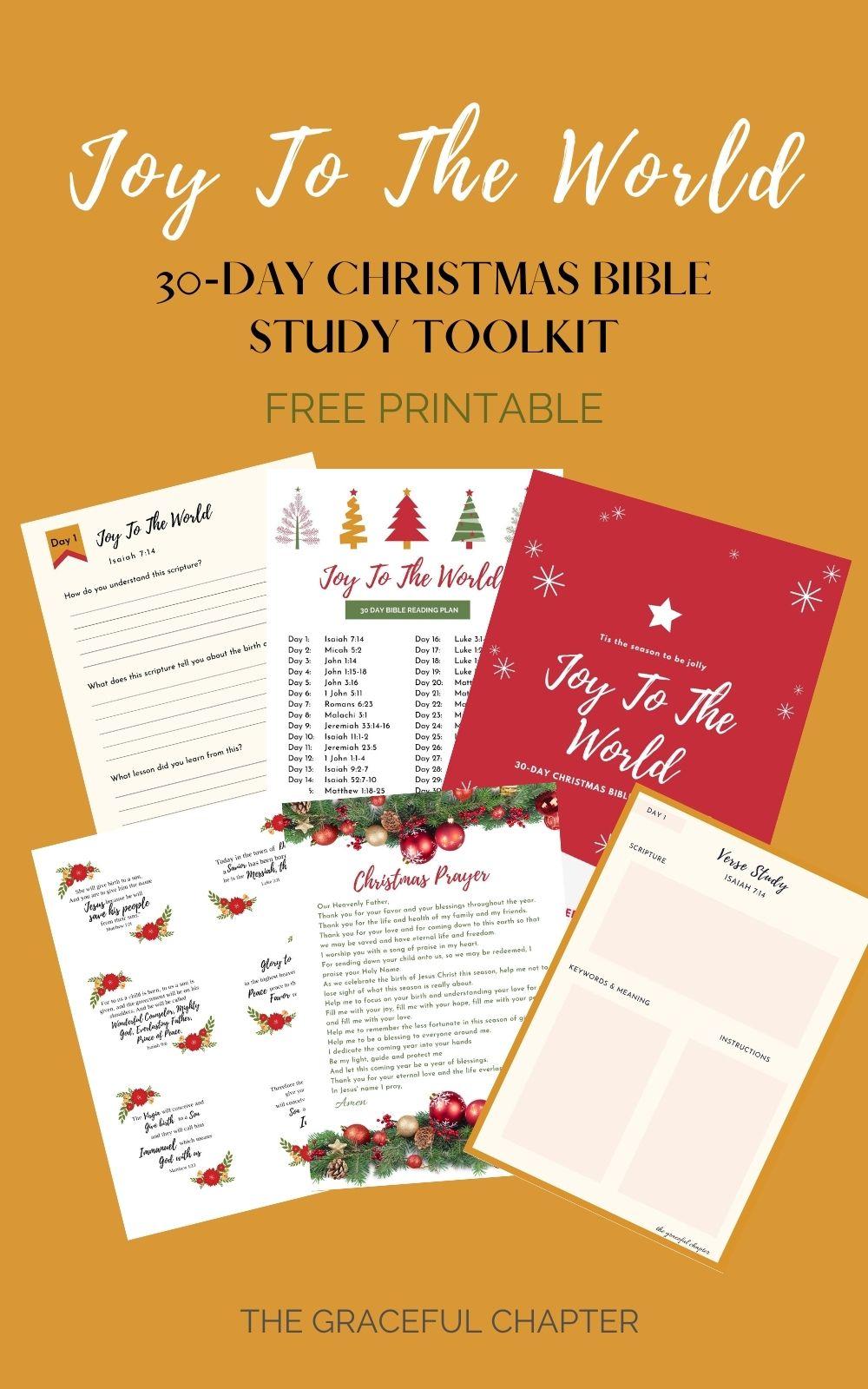 Joy to the world - Christmas Bible Study toolkit