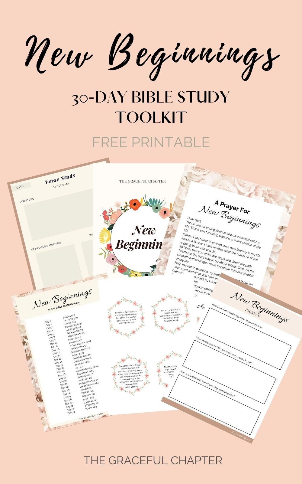 new beginnings bible study guide