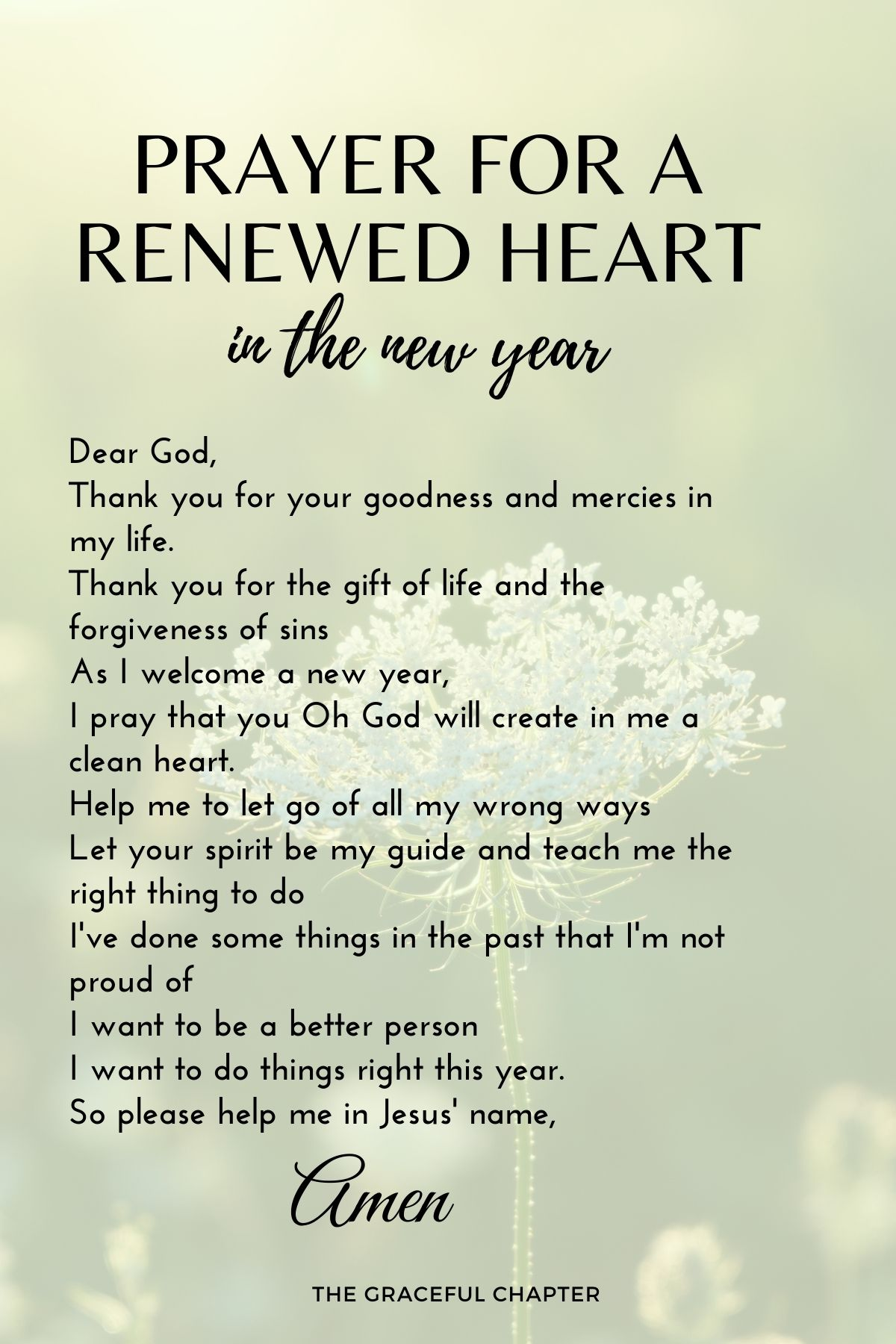 Prayer for a renewed heart in the new year