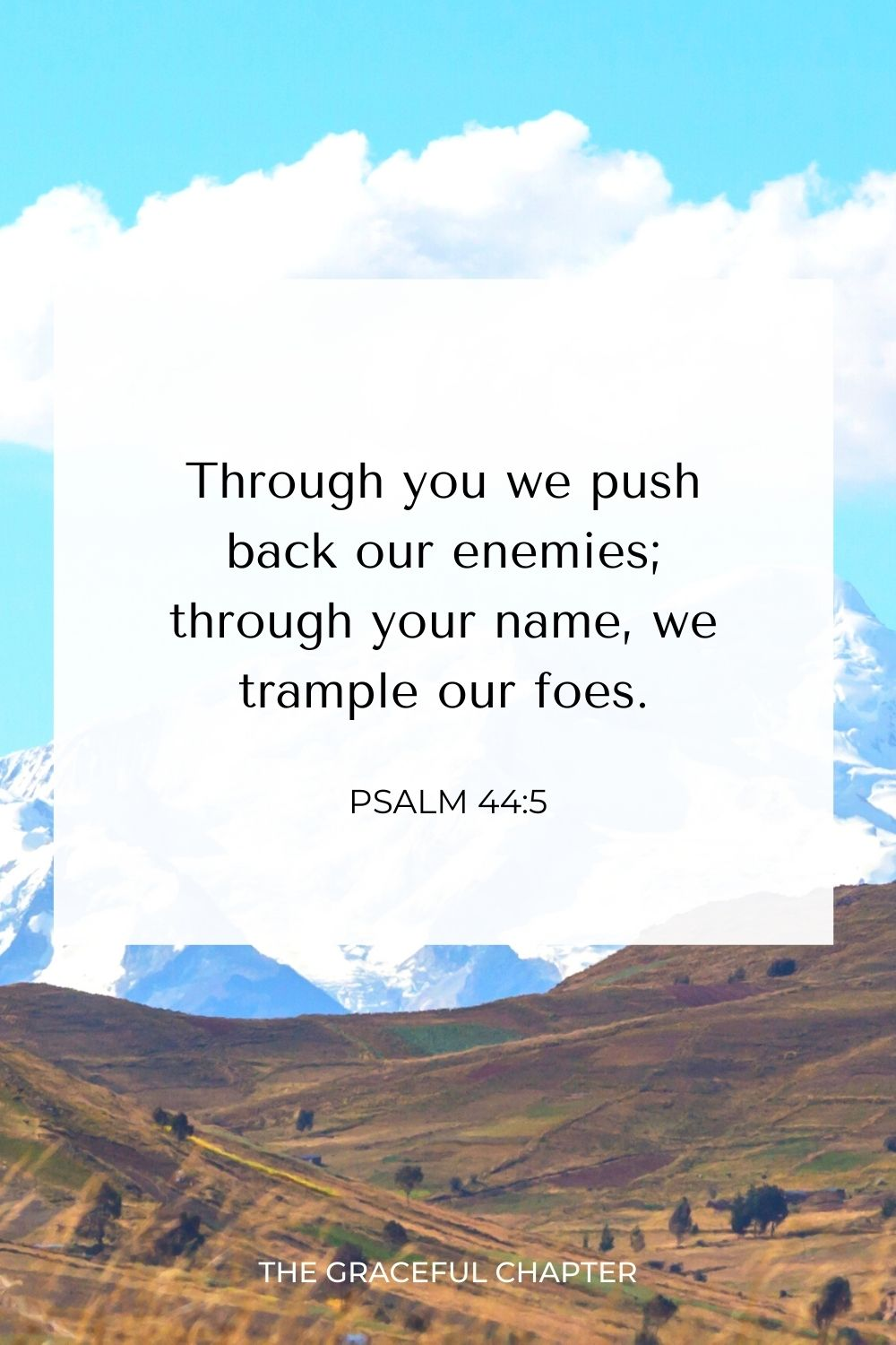 Through you we push back our enemies; through your name we trample our foes. Psalm 44:5