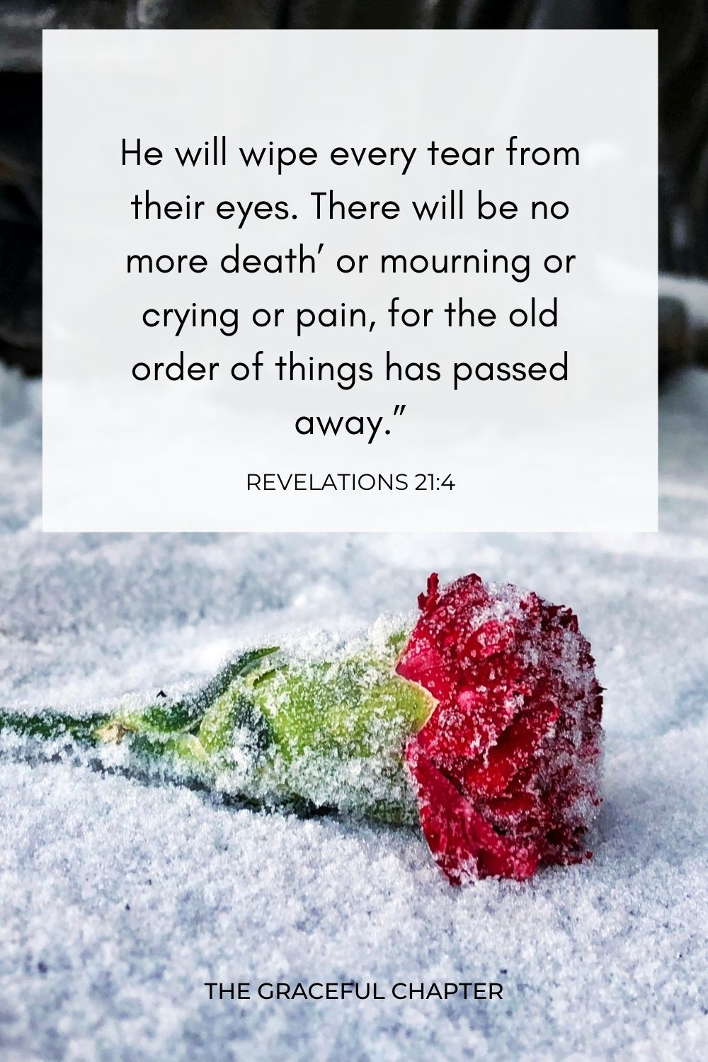 """He will wipe every tear from their eyes. There will be no more death' or mourning or crying or pain, for the old order of things has passed away."""" Revelations 21:4"""