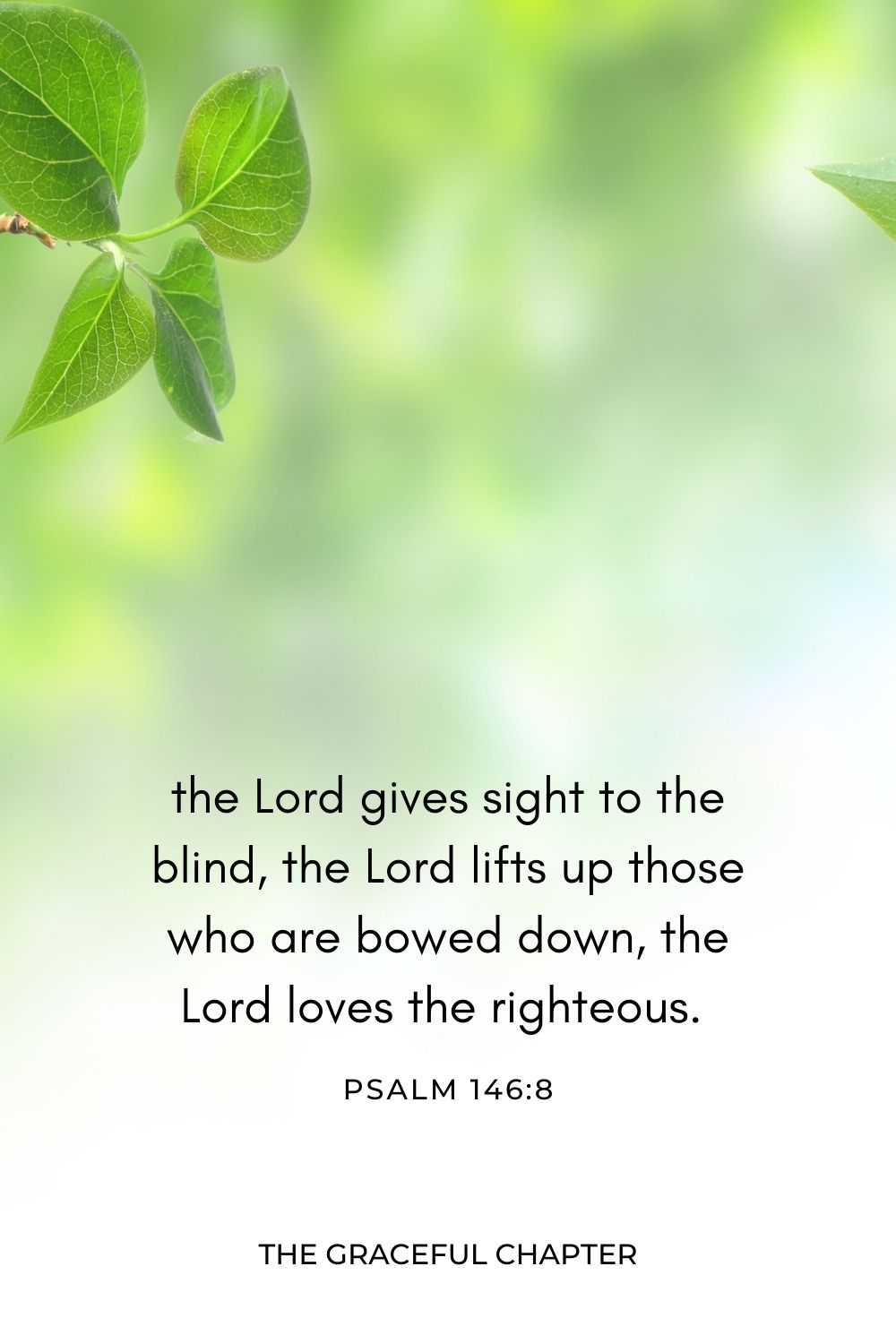 The Lord gives sight to the blind, the Lord lifts up those who are bowed down, the Lord loves the righteous. Psalm 146:8