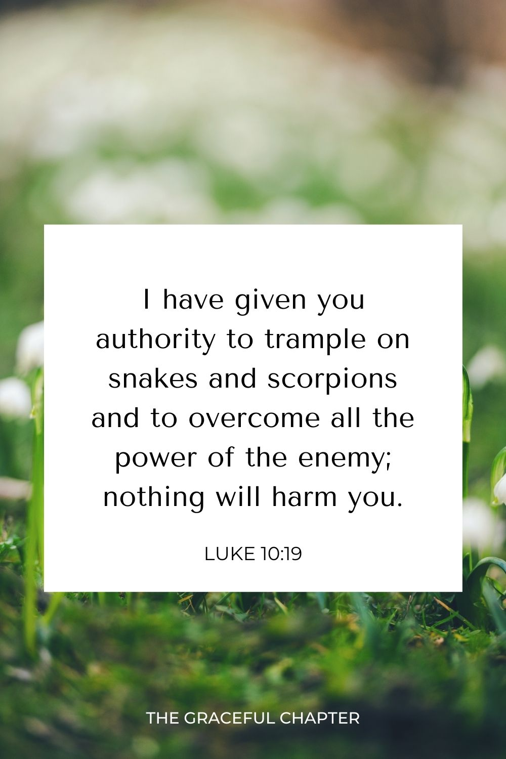 I have given you authority to trample on snakes and scorpions and to overcome all the power of the enemy; nothing will harm you. Luke 10:19