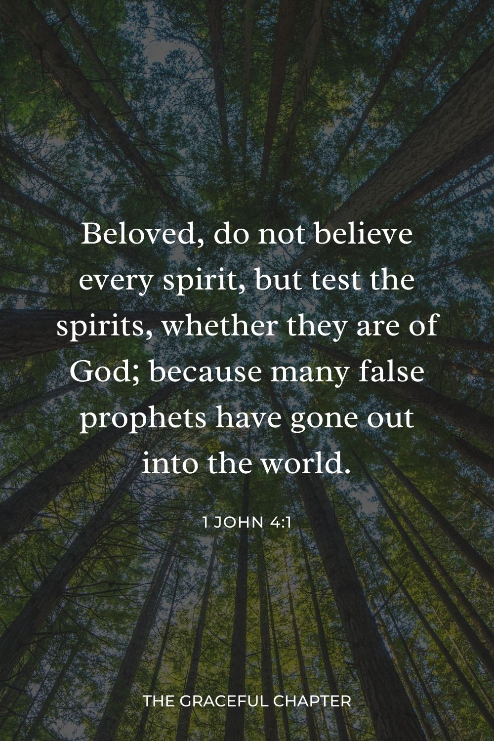 Beloved, do not believe every spirit, but test the spirits, whether they are of God; because many false prophets have gone out into the world. 1 John 4:1