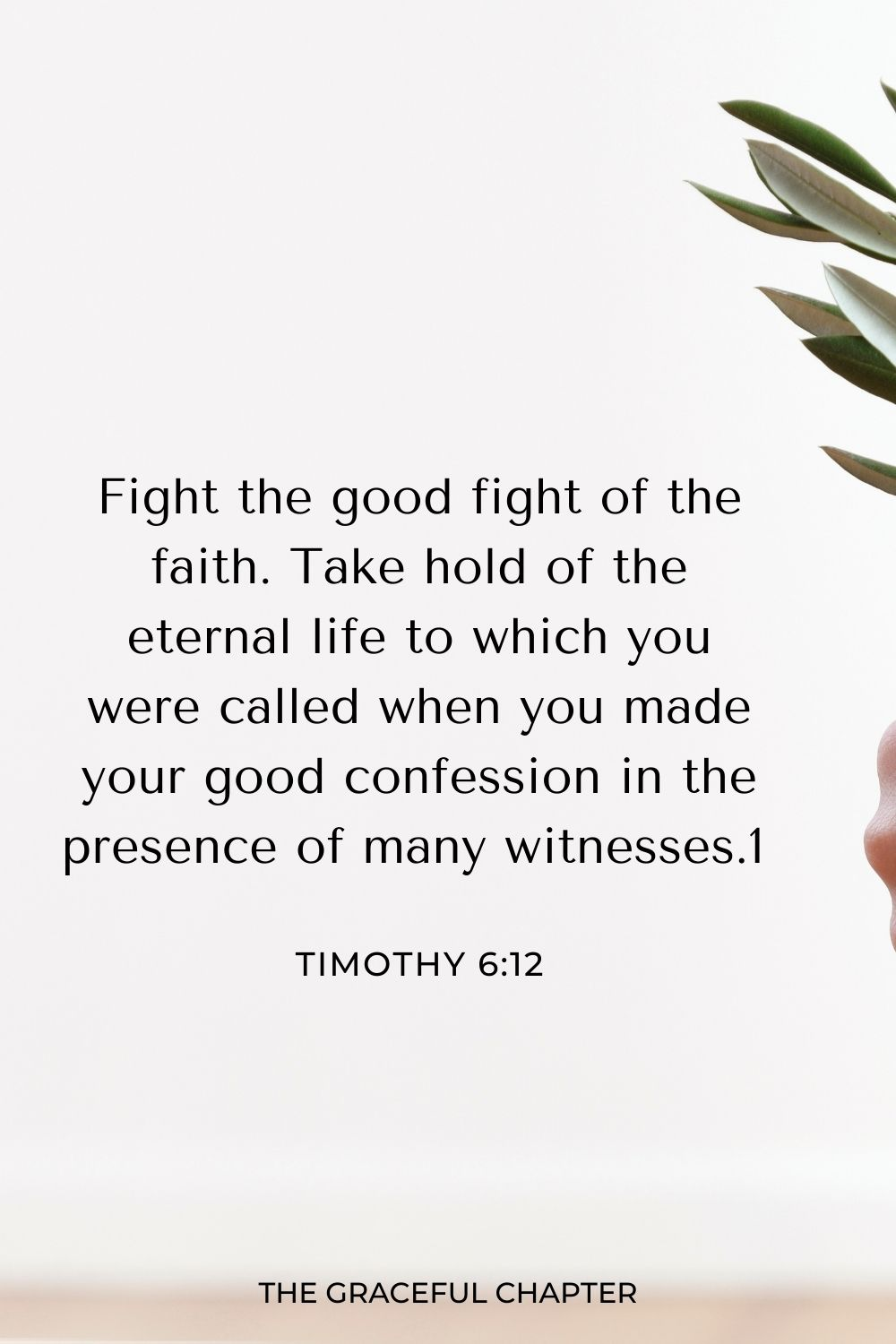 Fight the good fight of the faith. Take hold of the eternal life to which you were called when you made your good confession in the presence of many witnesses. 1 Timothy 6:12