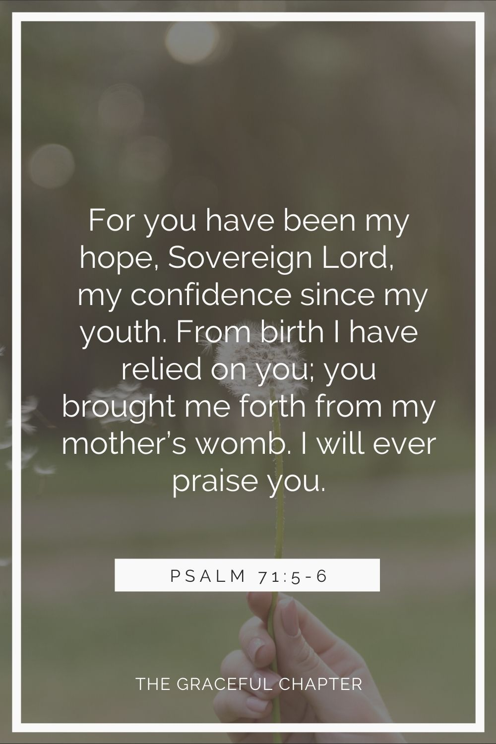 For you have been my hope, Sovereign Lord, my confidence since my youth. From birth I have relied on you; you brought me forth from my mother's womb. I will ever praise you. Psalms 71:5-6