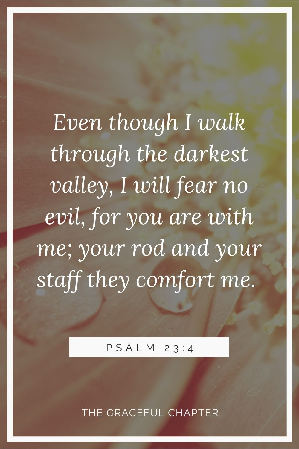 Even though I walk through the darkest valley, I will fear no evil, for you are with me; your rod and your staff, they comfort me. Psalm 23:4