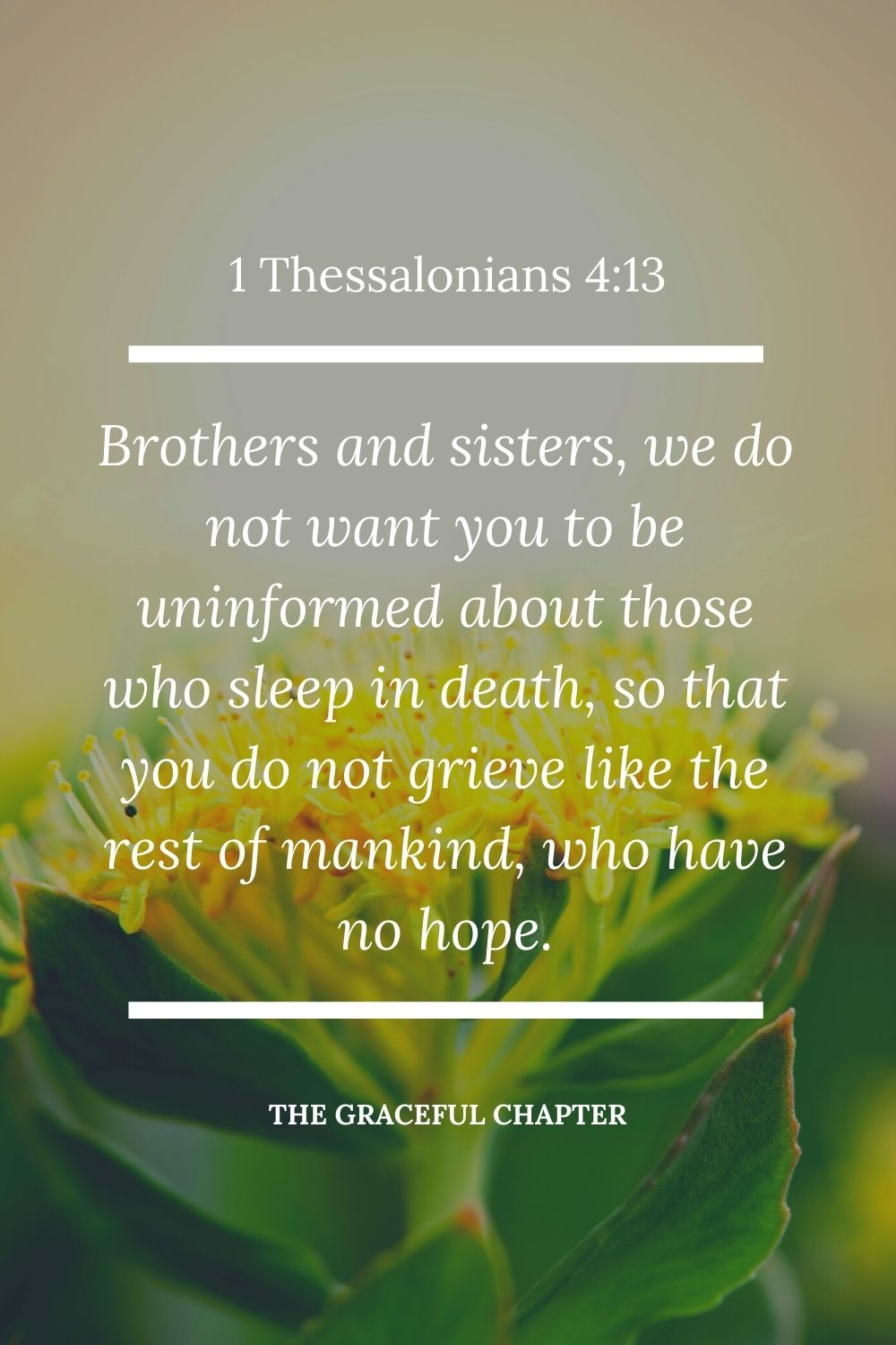 Brothers and sisters, we do not want you to be uninformed about those who sleep in death, so that you do not grieve like the rest of mankind, who have no hope.1 Thessalonians 4:13