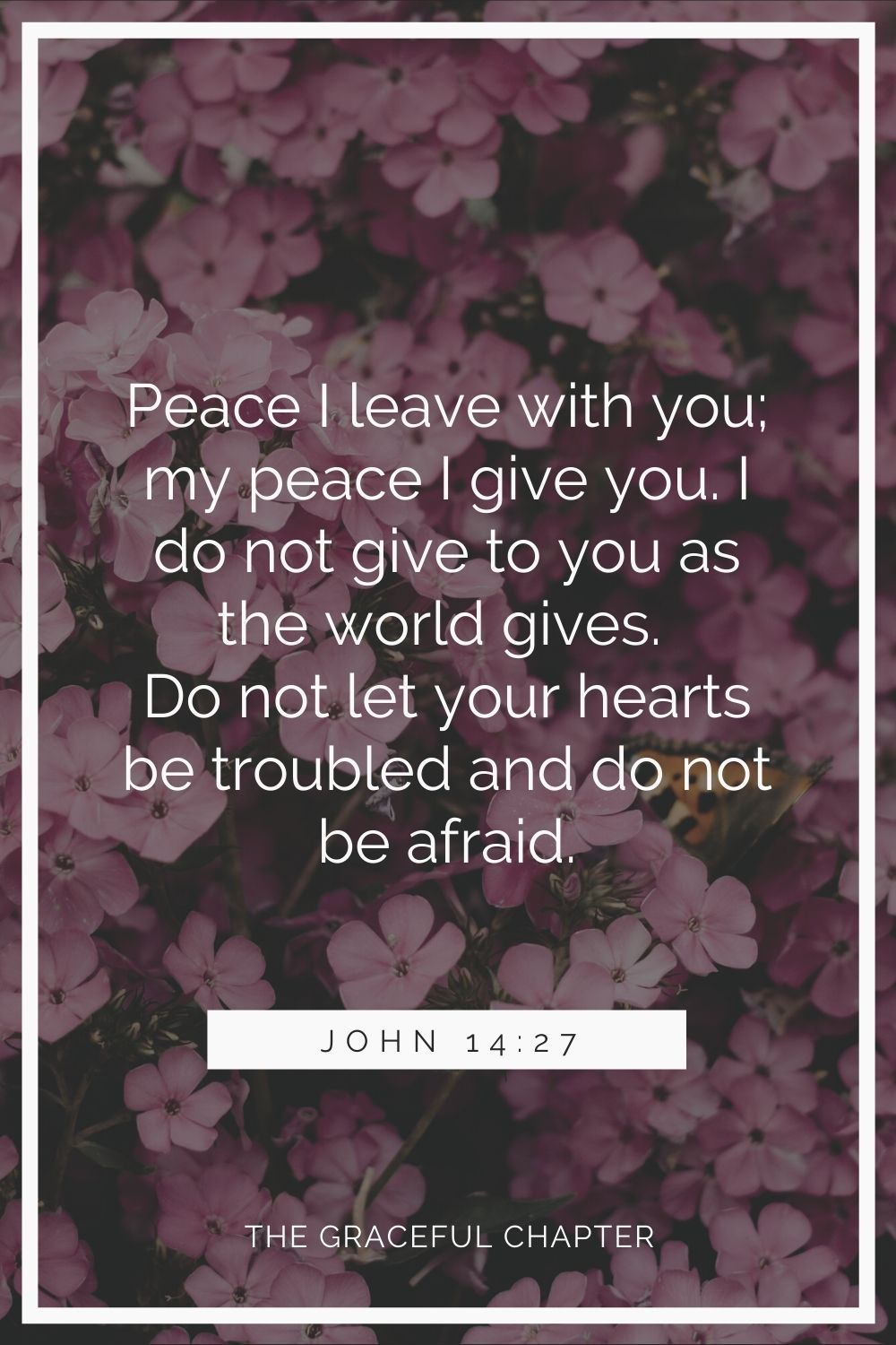 Peace I leave with you; my peace I give you. I do not give to you as the world gives. Do not let your hearts be troubled and do not be afraid. John 14:27