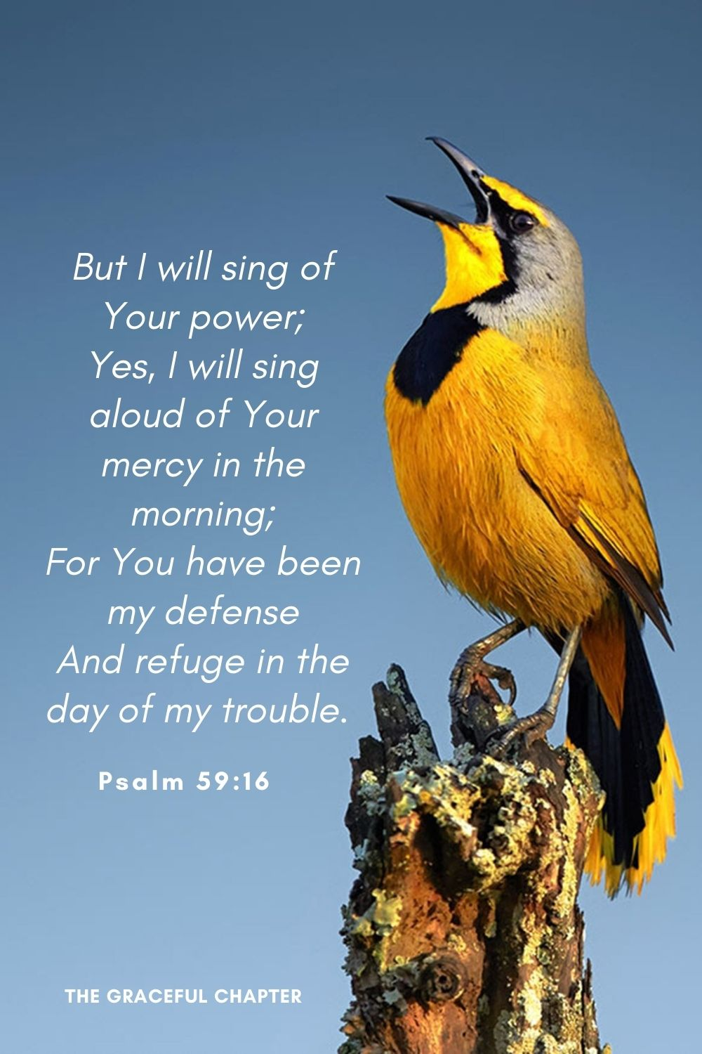 But I will sing of Your power; Yes, I will sing aloud of Your mercy in the morning; For You have been my defense And refuge in the day of my trouble.Psalm 59:16
