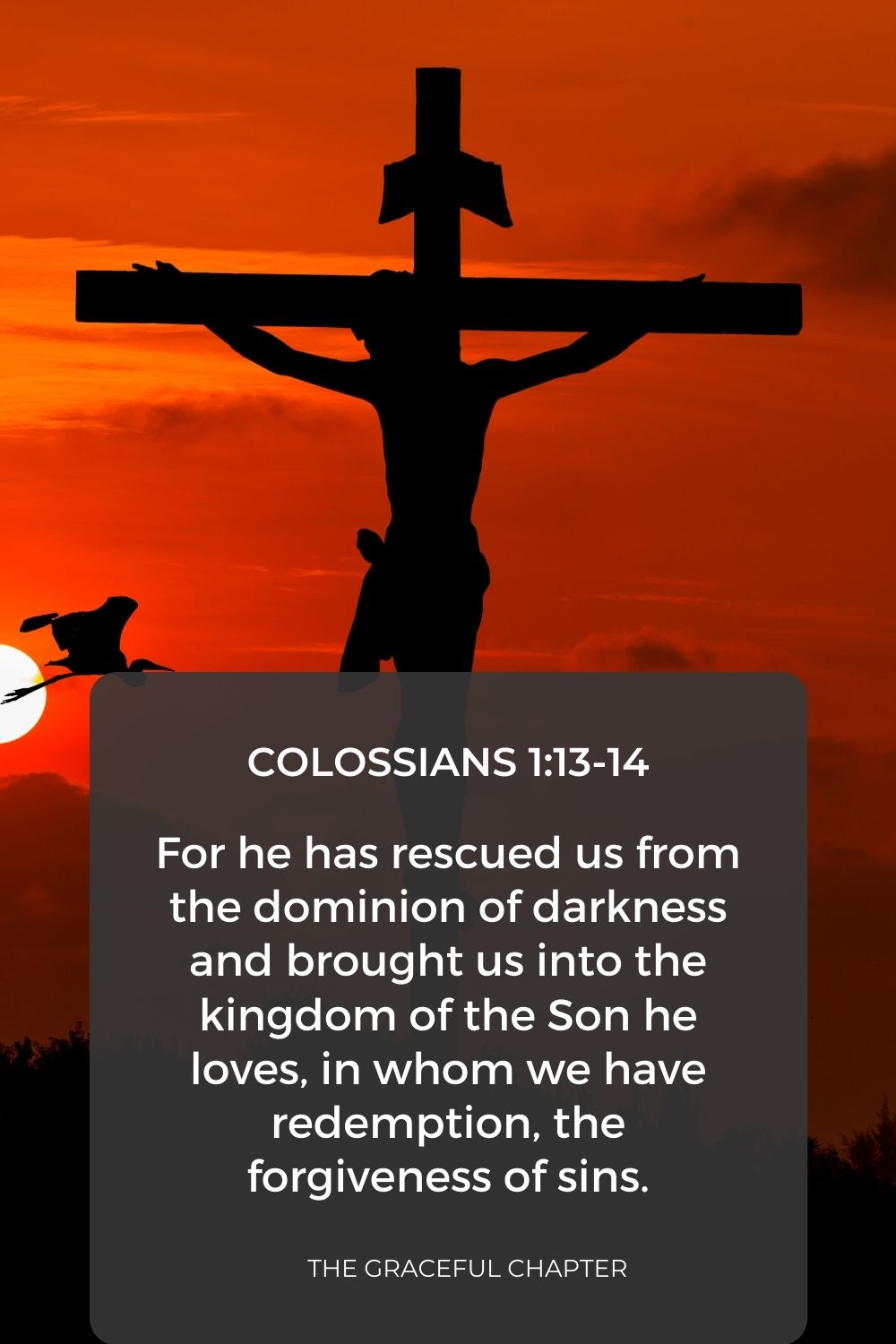 For he has rescued us from the dominion of darkness and brought us into the kingdom of the Son he loves, in whom we have redemption, the forgiveness of sins. Colossians 1:13-14
