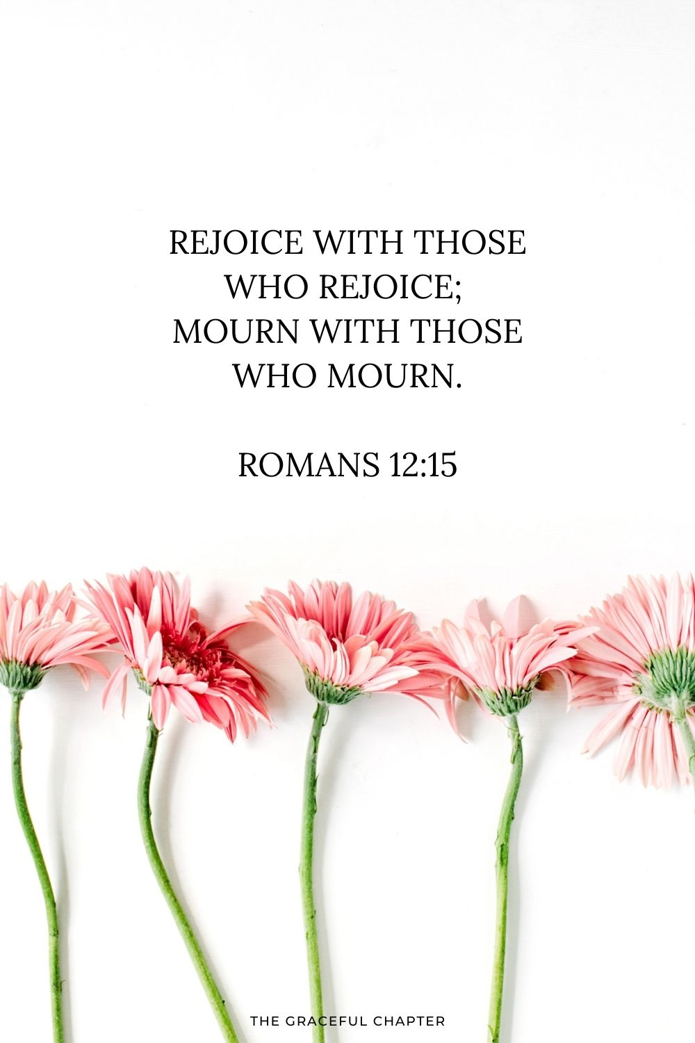 Rejoice with those who rejoice; mourn with those who mourn. Romans 12:15