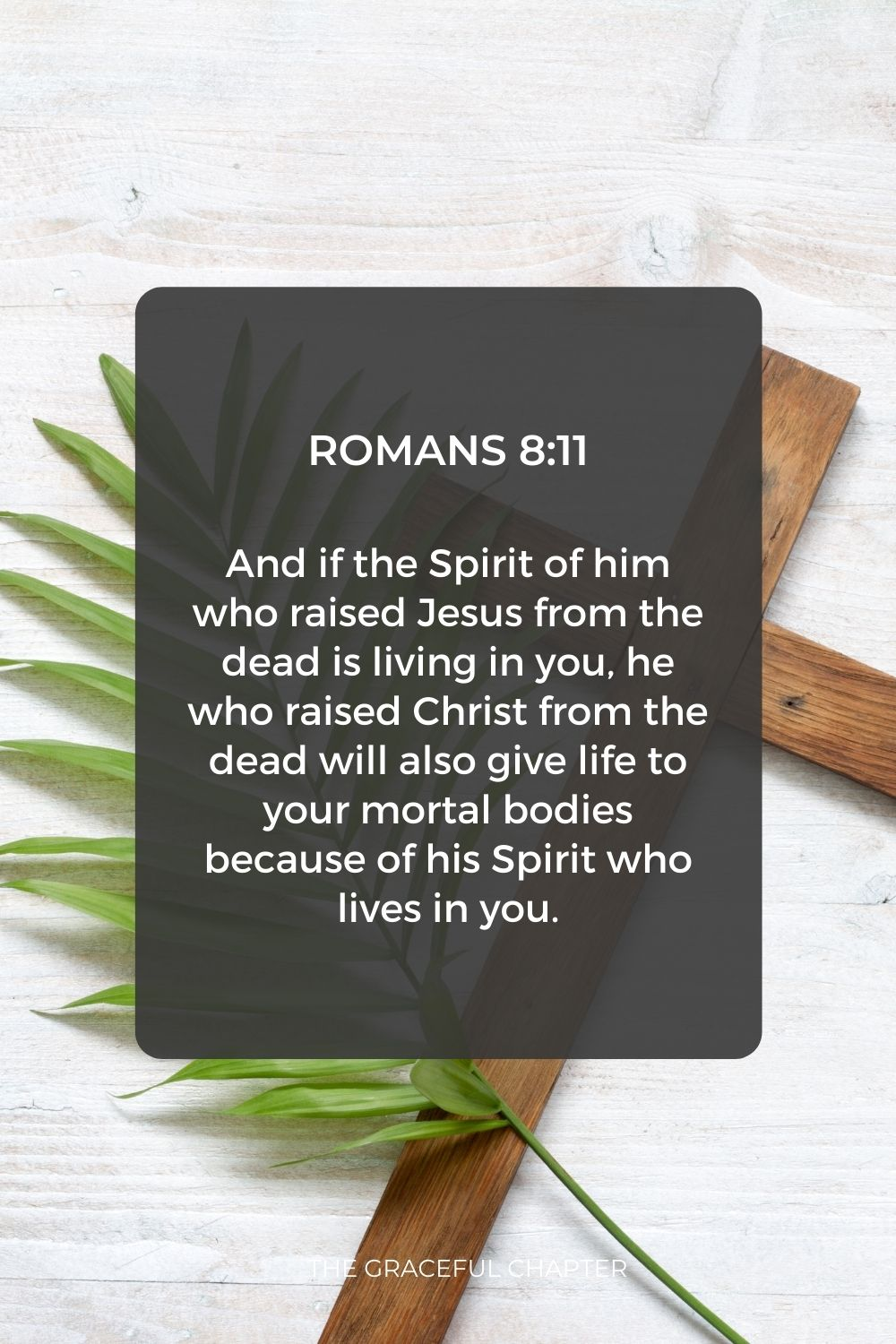 And if the Spirit of him who raised Jesus from the dead is living in you, he who raised Christ from the dead will also give life to your mortal bodies because of his Spirit who lives in you. Romans 8:11