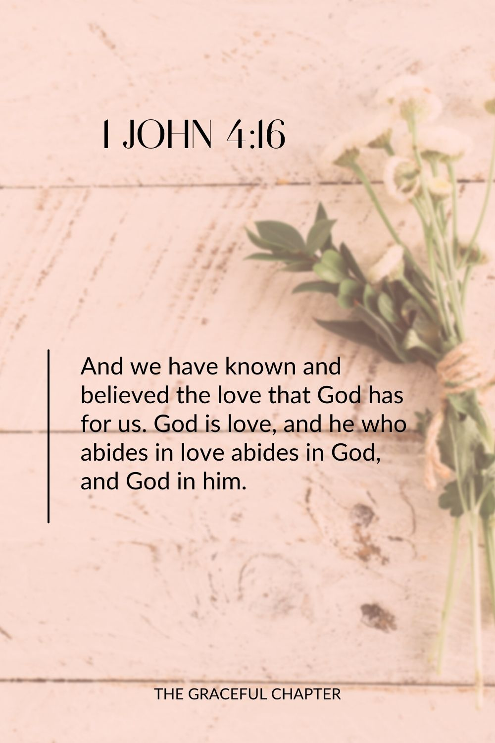 And we have known and believed the love that God has for us. God is love, and he who abides in love abides in God, and God in him. 1 John 4:16