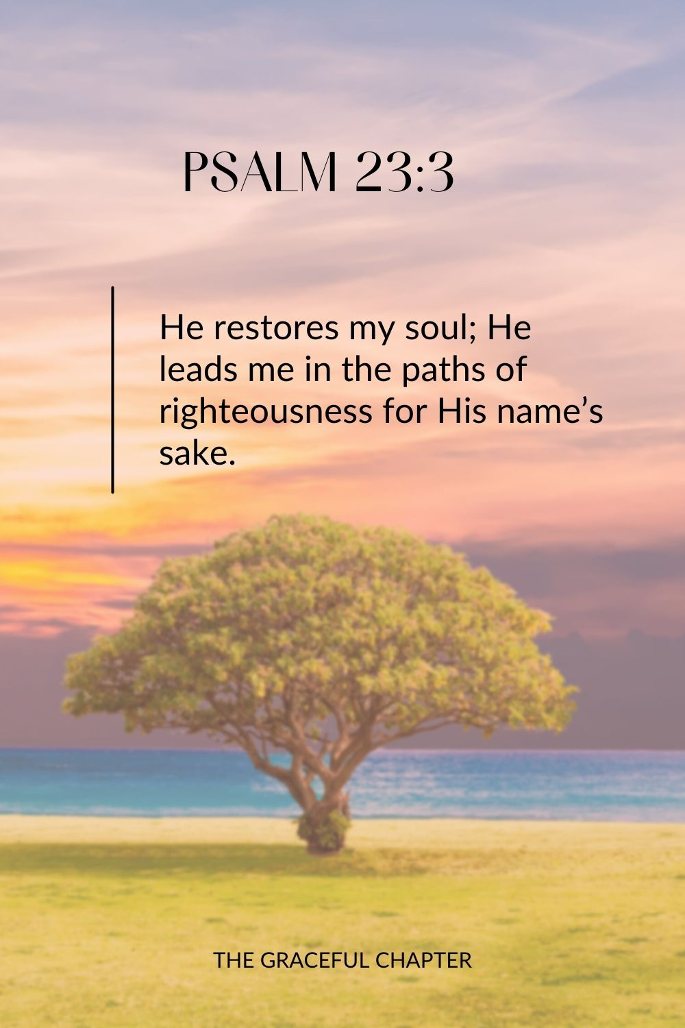 He restores my soul; He leads me in the paths of righteousness for His name's sake. Psalm 23:3