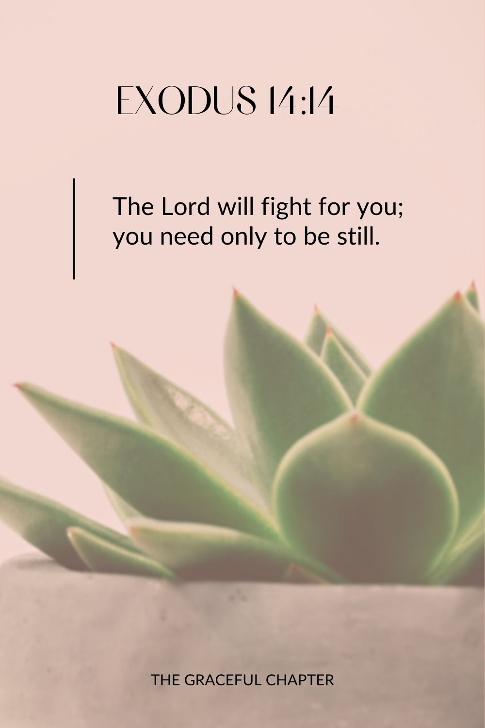 The Lord will fight for you; you need only to be still. Exodus 14:14