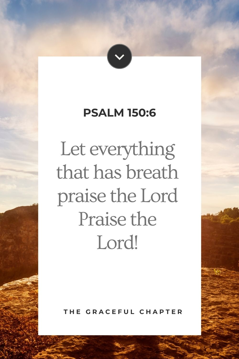 Let everything that has breath praise the Lord. Praise the Lord!