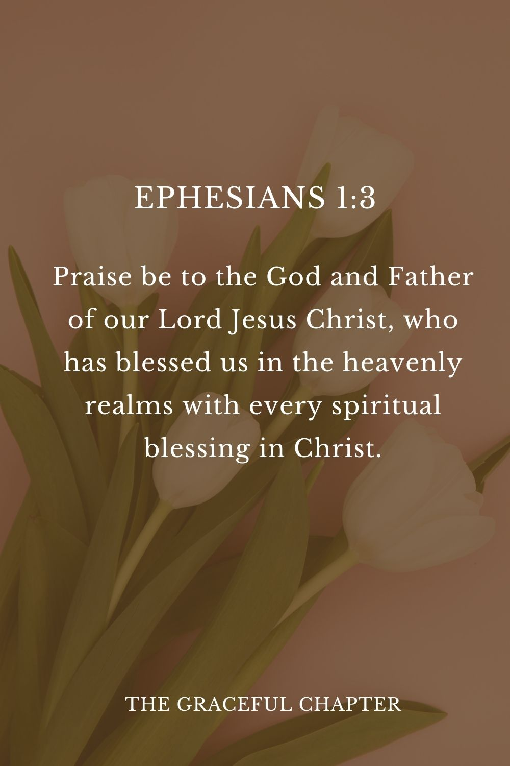 Praise be to the God and Father of our Lord Jesus Christ, who has blessed us in the heavenly realms with every spiritual blessing in Christ. Ephesians 1:3