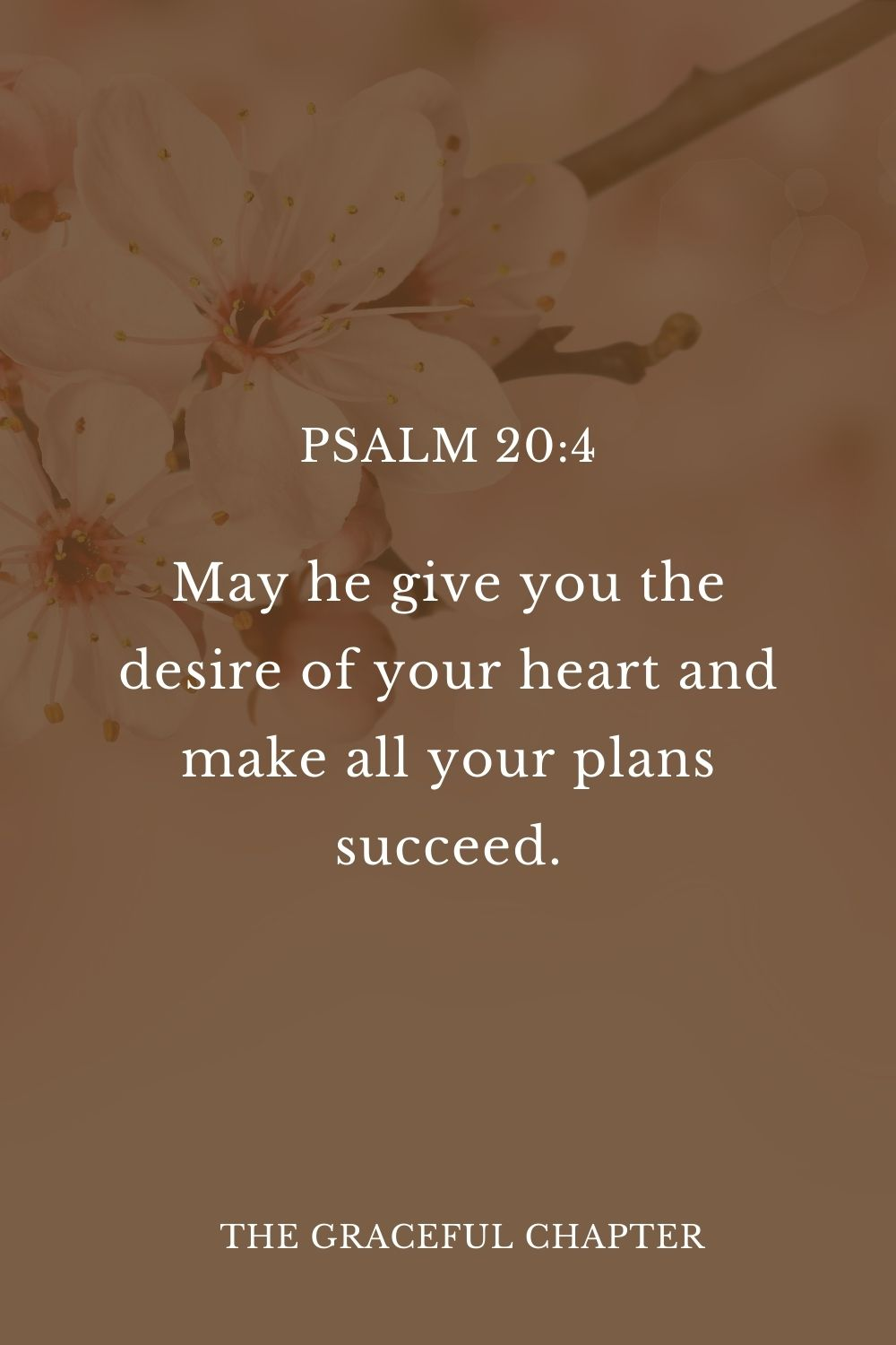 May he give you the desire of your heart and make all your plans succeed.  Psalm 20:4