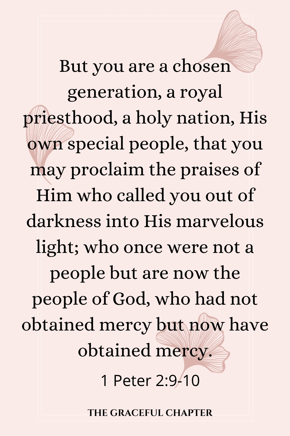 But you are a chosen generation, a royal priesthood, a holy nation, His own special people, that you may proclaim the praises of Him who called you out of darkness into His marvelous light; who once were not a people but are now the people of God, who had not obtained mercy but now have obtained mercy. 1 Peter 2:9-10