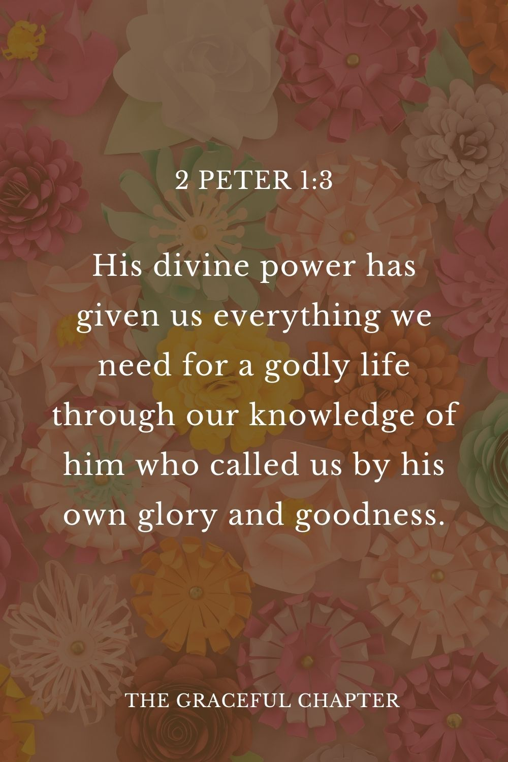 His divine power has given us everything we need for a godly life through our knowledge of him who called us by his own glory and goodness. 2 Peter 1:3