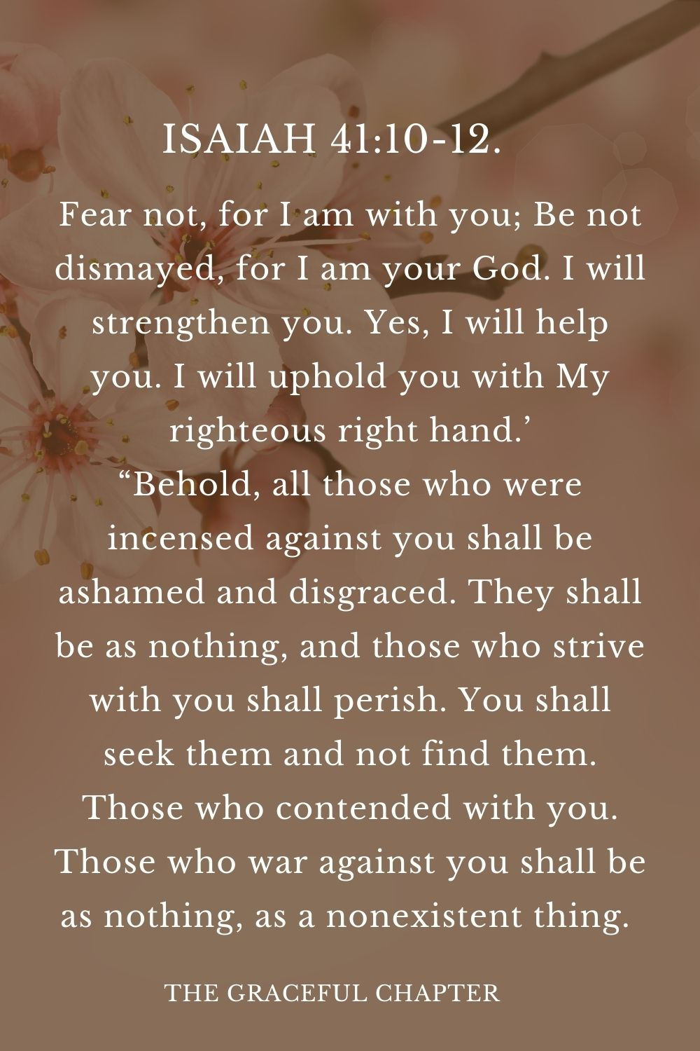 """Fear not, for I am with you; Be not dismayed, for I am your God. I will strengthen you. Yes, I will help you. I will uphold you with My righteous right hand.' """"Behold, all those who were incensed against you shall be ashamed and disgraced. They shall be as nothing, and those who strive with you shall perish. You shall seek them and not find them. Those who contended with you. Those who war against you shall be as nothing, as a nonexistent thing.  Isaiah 41:10-12."""