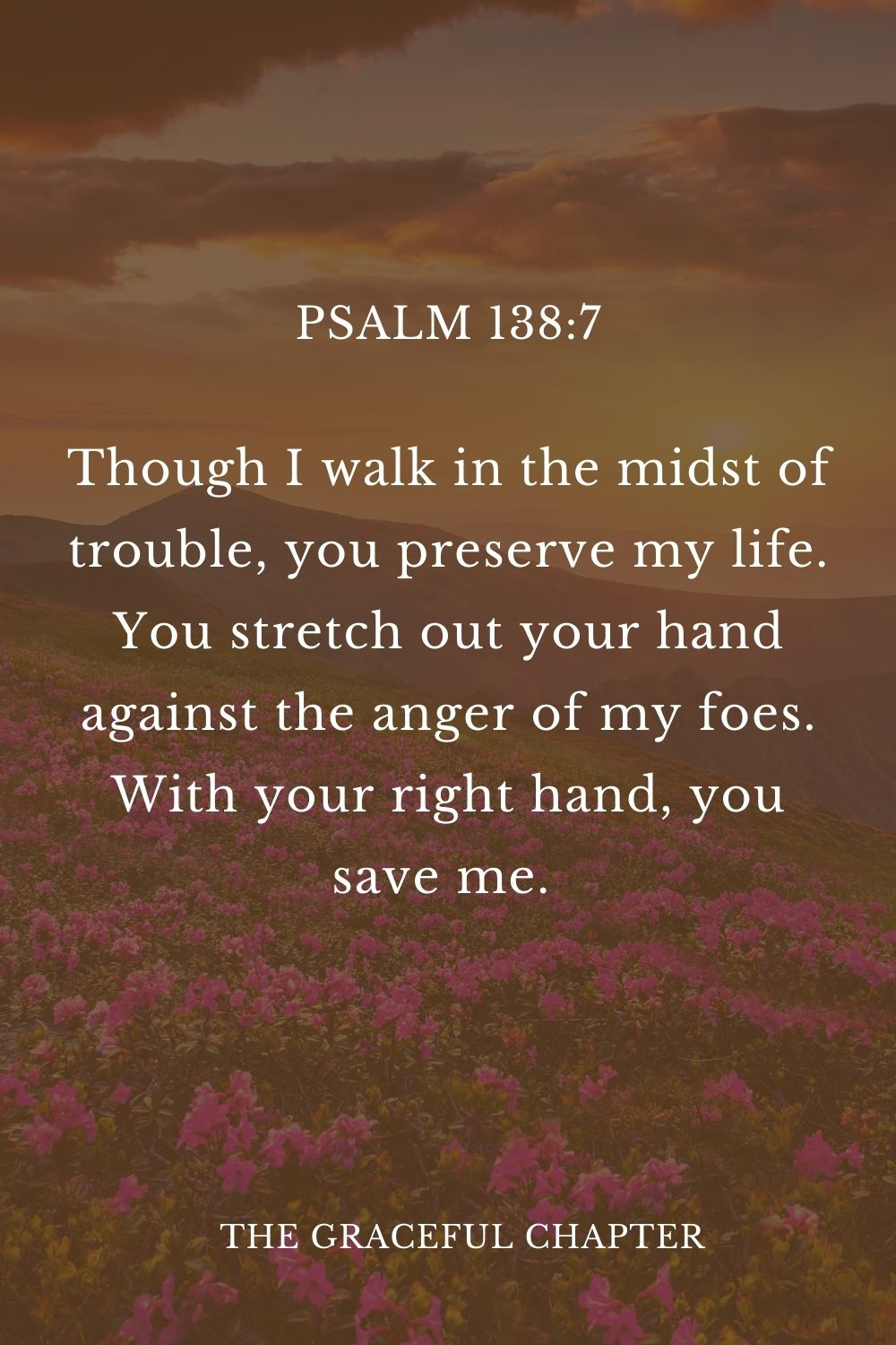 Though I walk in the midst of trouble, you preserve my life. You stretch out your hand against the anger of my foes. With your right hand, you save me.  Psalm 138:7