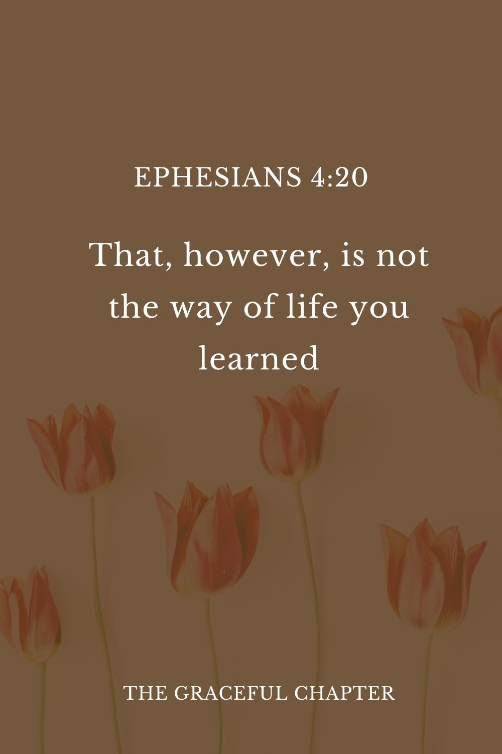 20 That, however, is not the way of life you learned Ephesians 4:20