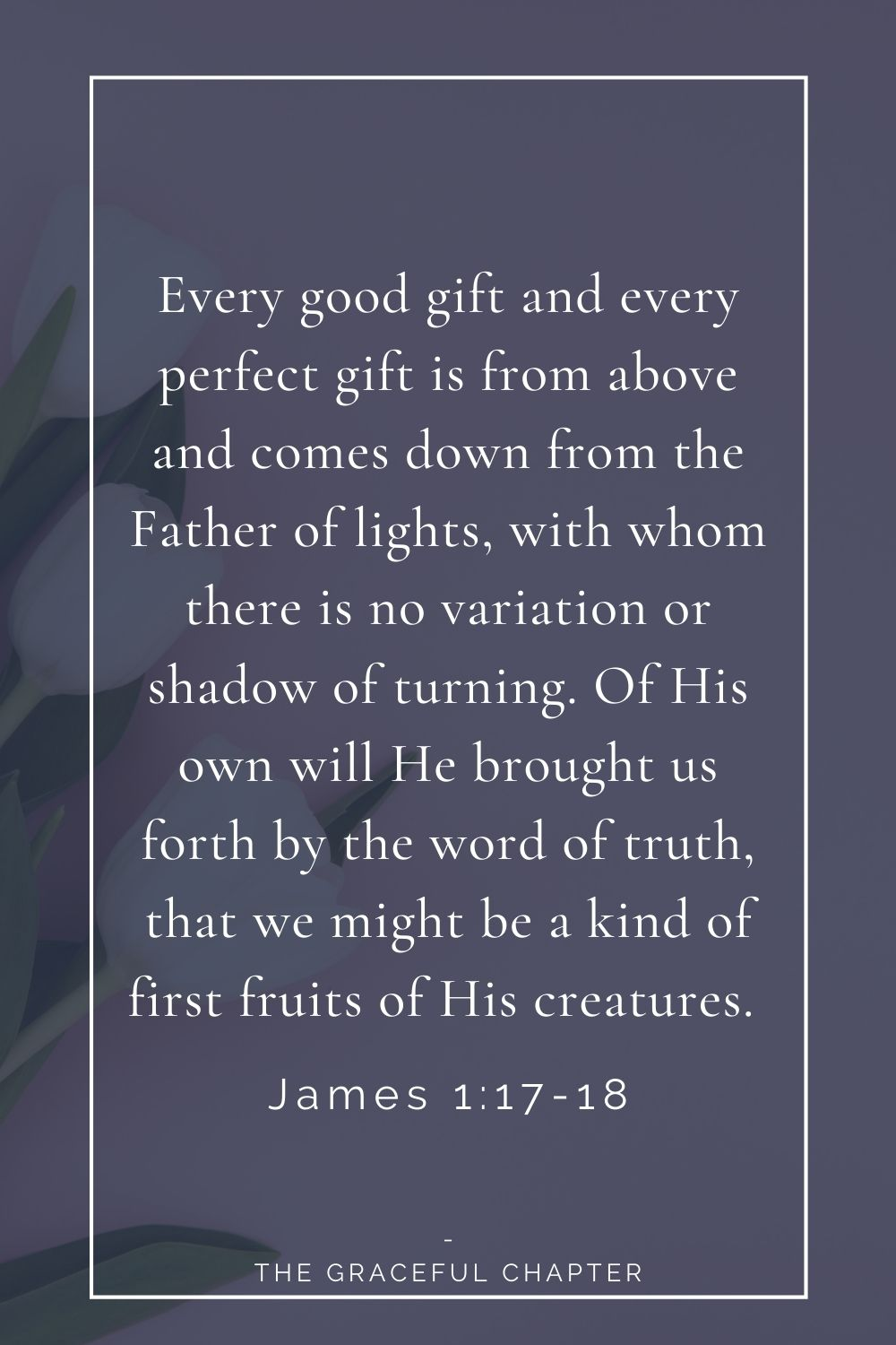 Every good gift and every perfect gift is from above and comes down from the Father of lights, with whom there is no variation or shadow of turning. Of His own will He brought us forth by the word of truth, that we might be a kind of first fruits of His creatures.  James 1:17-18