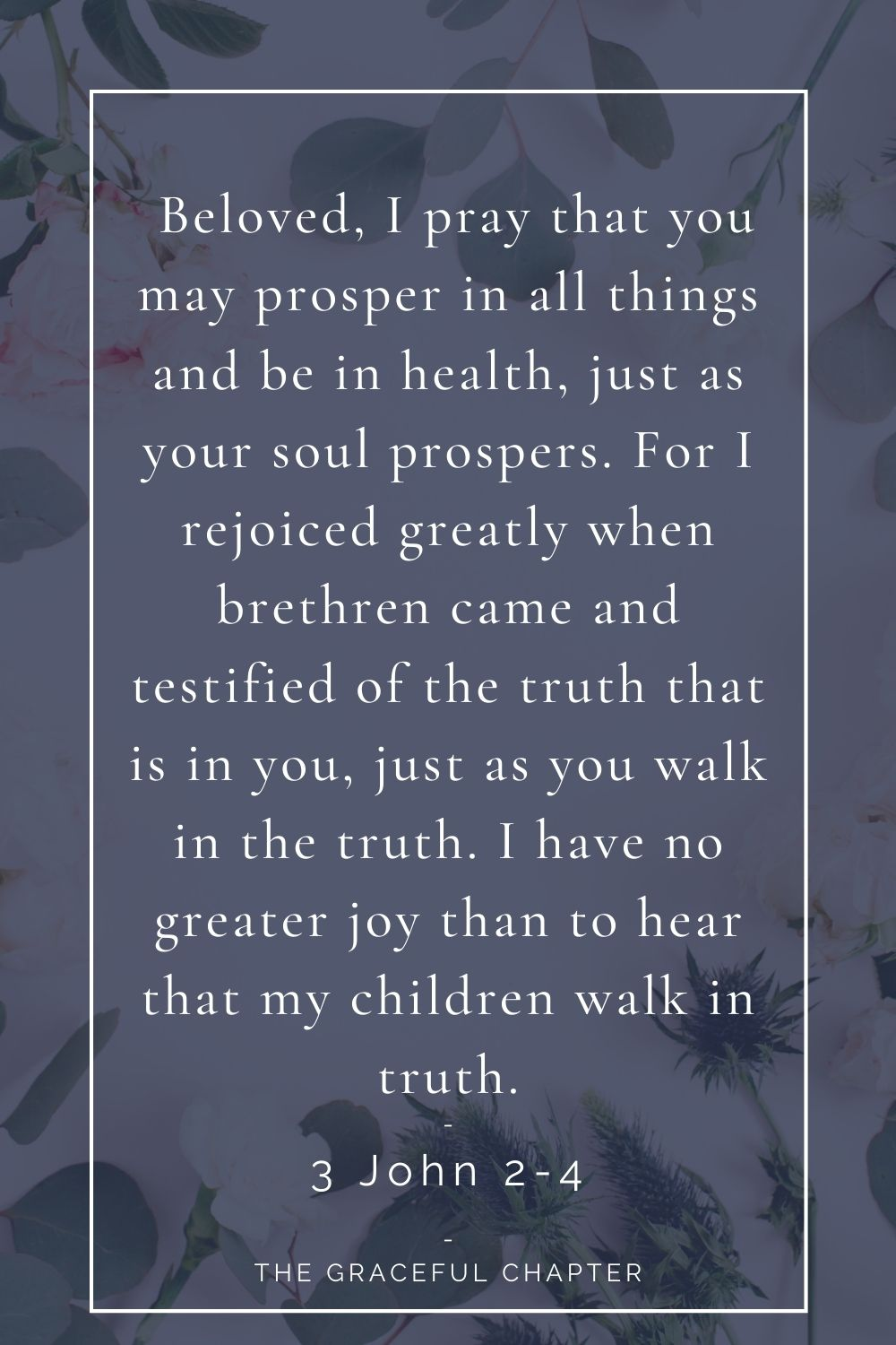 Beloved, I pray that you may prosper in all things and be in health, just as your soul prospers. For I rejoiced greatly when brethren came and testified of the truth that is in you, just as you walk in the truth. I have no greater joy than to hear that my children walk in truth. 3 John 2-4