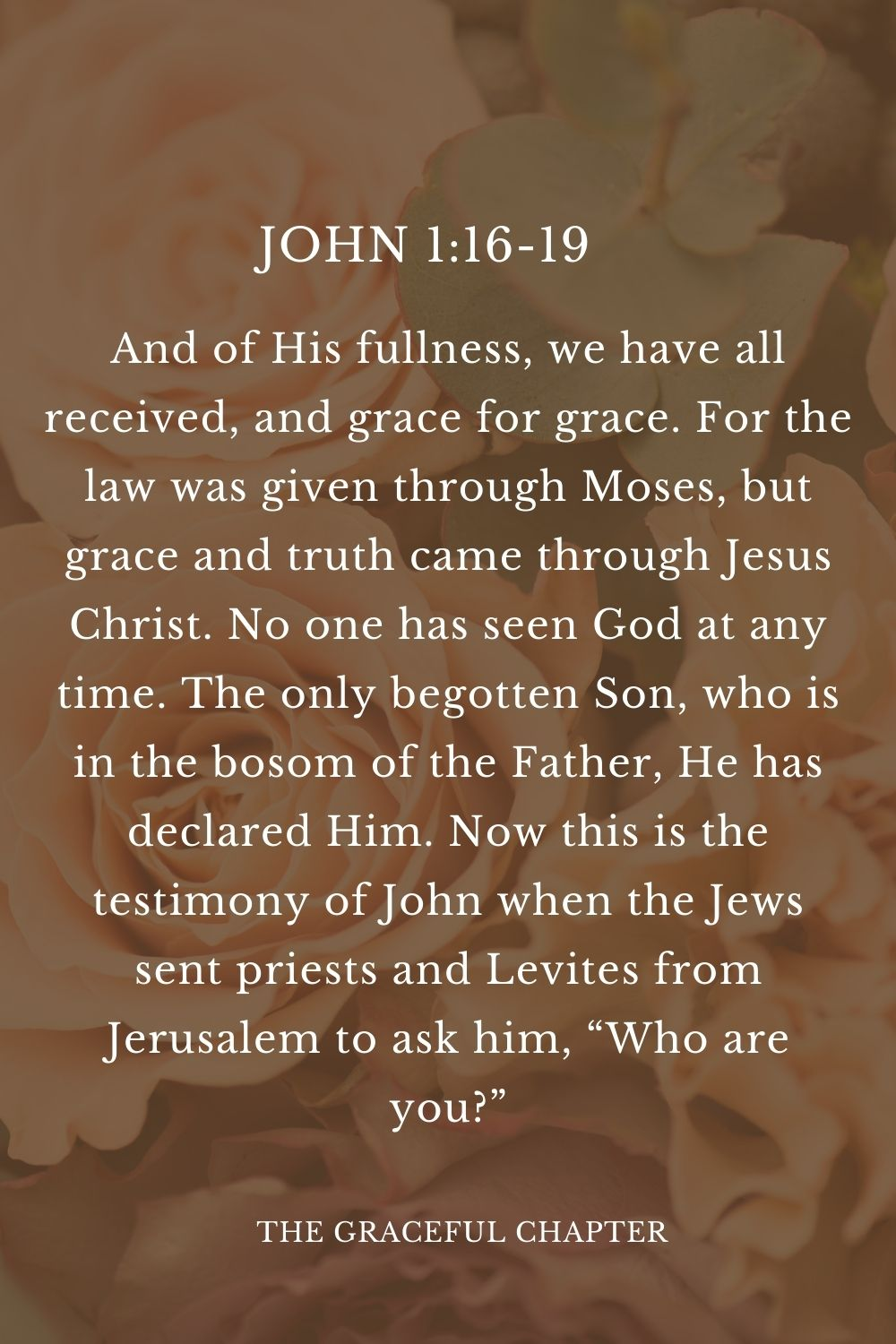"""And of His fullness, we have all received, and grace for grace. For the law was given through Moses, but grace and truth came through Jesus Christ. No one has seen God at any time. The only begotten Son, who is in the bosom of the Father, He has declared Him. Now this is the testimony of John when the Jews sent priests and Levites from Jerusalem to ask him, """"Who are you?"""" John 1:16-19"""