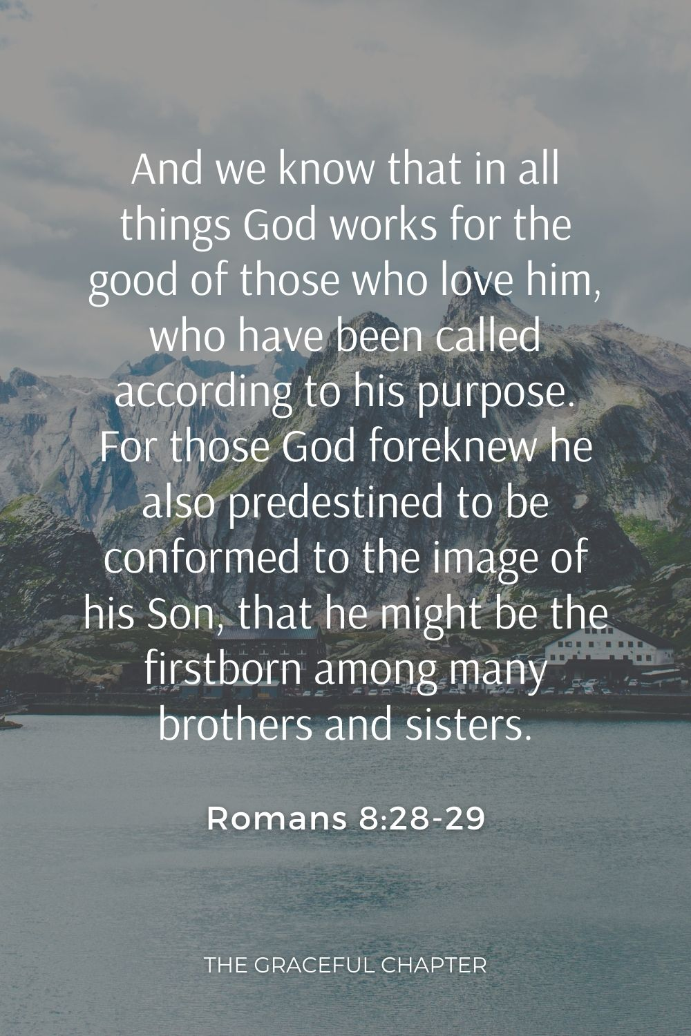 And we know that in all things God works for the good of those who love him, who have been called according to his purpose. For those God foreknew he also predestined to be conformed to the image of his Son, that he might be the firstborn among many brothers and sisters. Romans 8:28-29