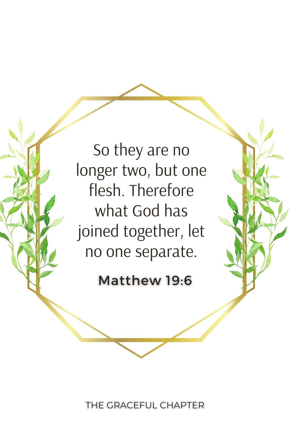 So they are no longer two, but one flesh. Therefore what God has joined together, let no one separate. Matthew 19:6