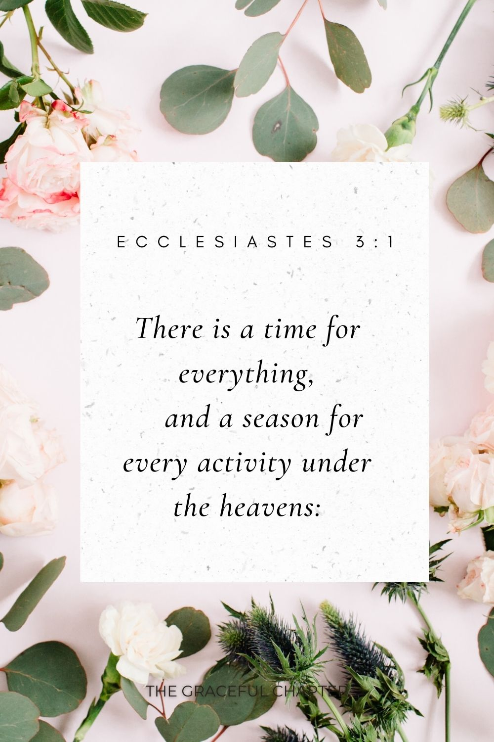 There is a time for everything,     and a season for every activity under the heavens: Ecclesiastes 3:1