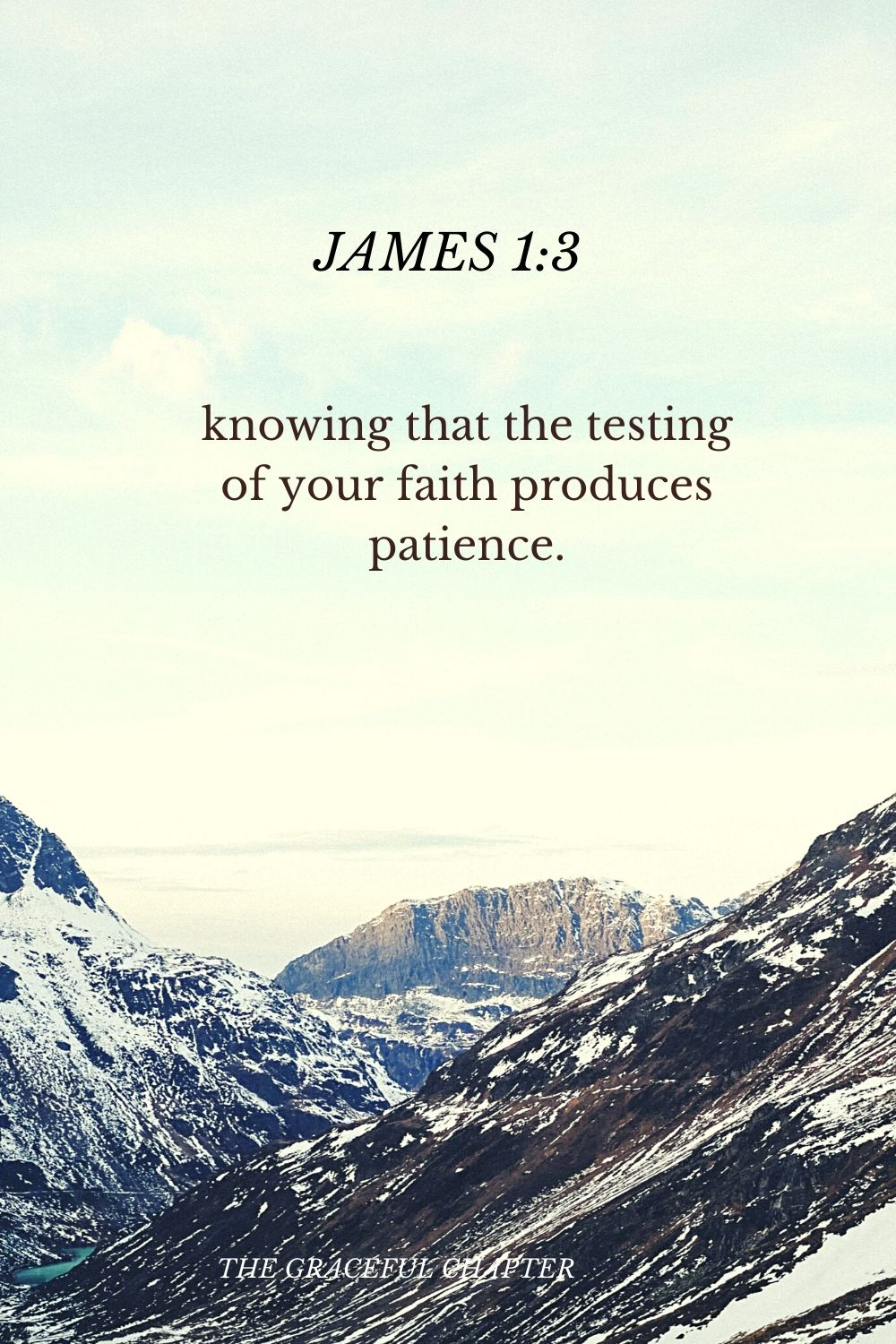 knowing that the testing of your faith produces patience. James 1:3