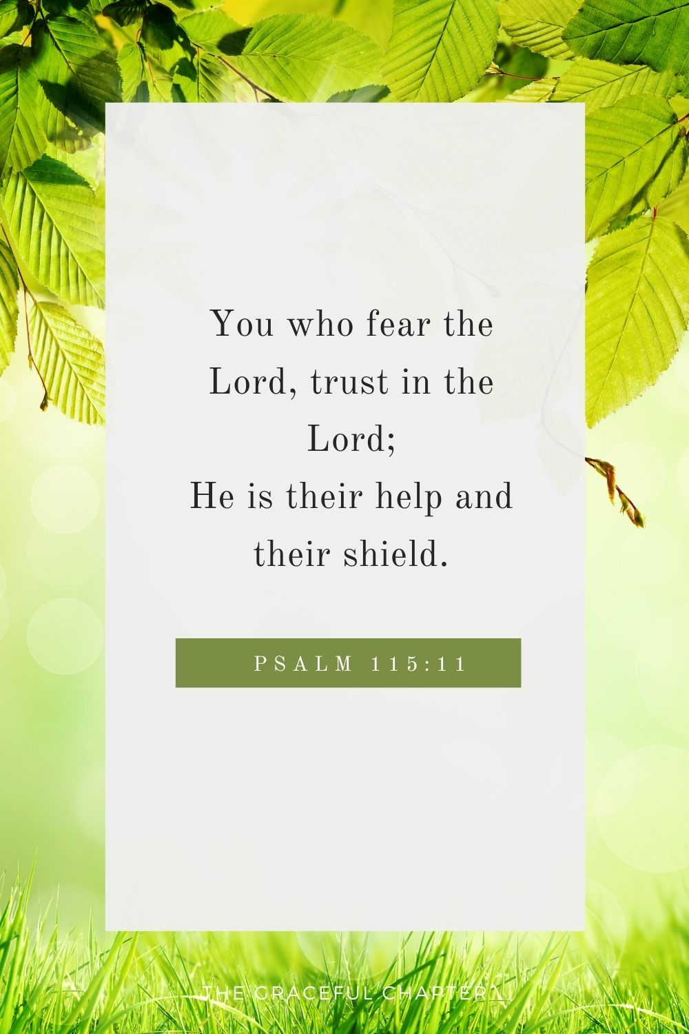 You who fear the Lord, trust in the Lord; He is their help and their shield. Psalm 115:11