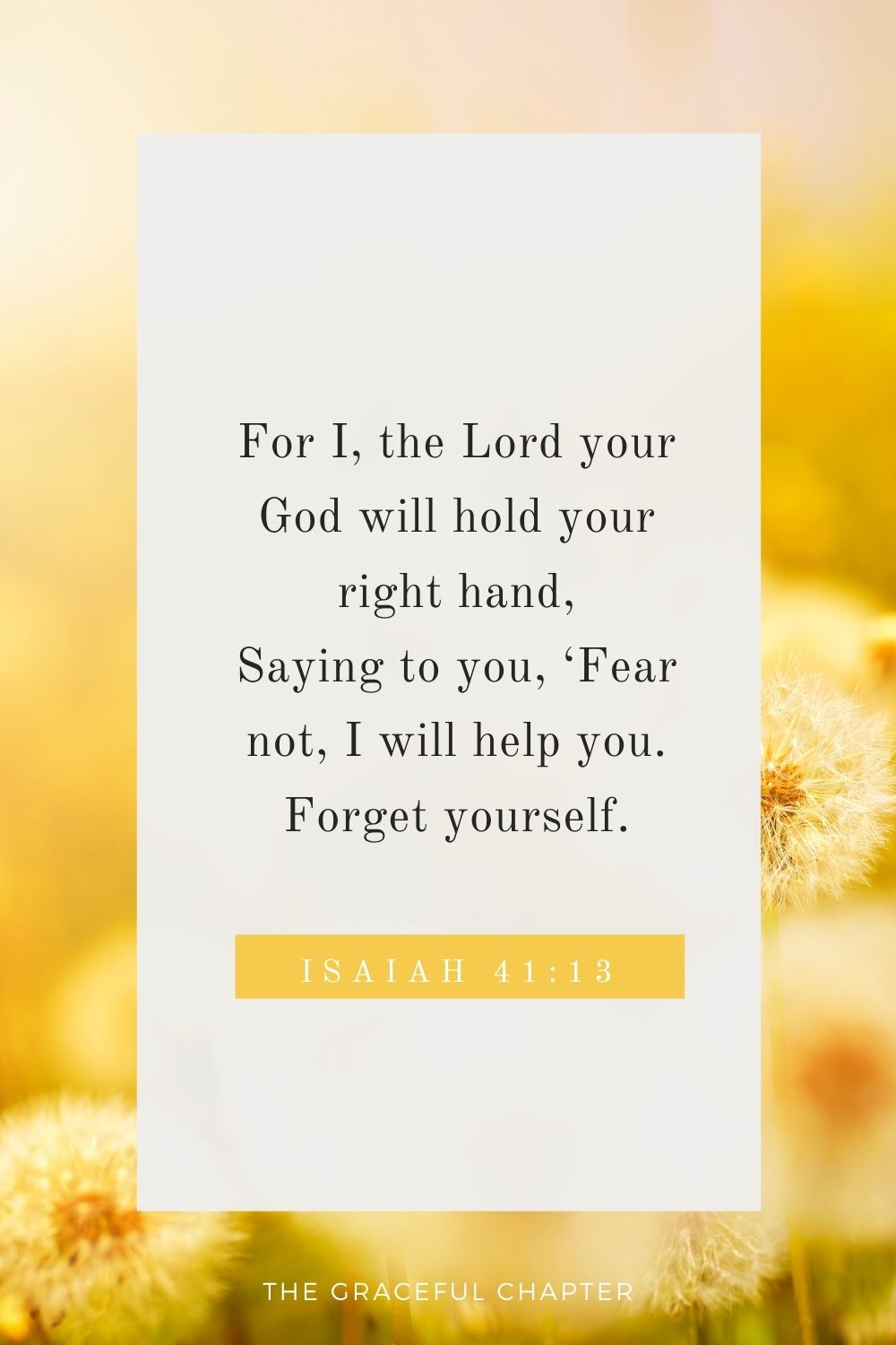 For I, the Lord your God will hold your right hand, Saying to you, 'Fear not, I will help you. Isaiah 41:13
