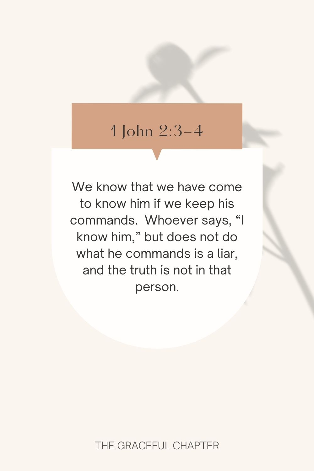 """We know that we have come to know him if we keep his commands.  Whoever says, """"I know him,"""" but does not do what he commands is a liar, and the truth is not in that person. 1 John 2:3-4"""