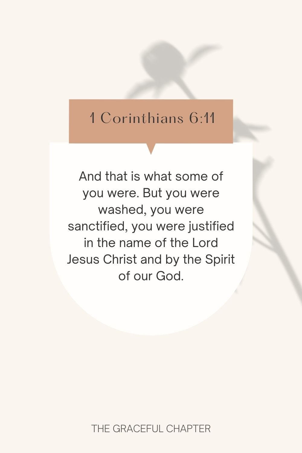 And that is what some of you were. But you were washed, you were sanctified, you were justified in the name of the Lord Jesus Christ and by the Spirit of our God. 1 Corinthians 6:11