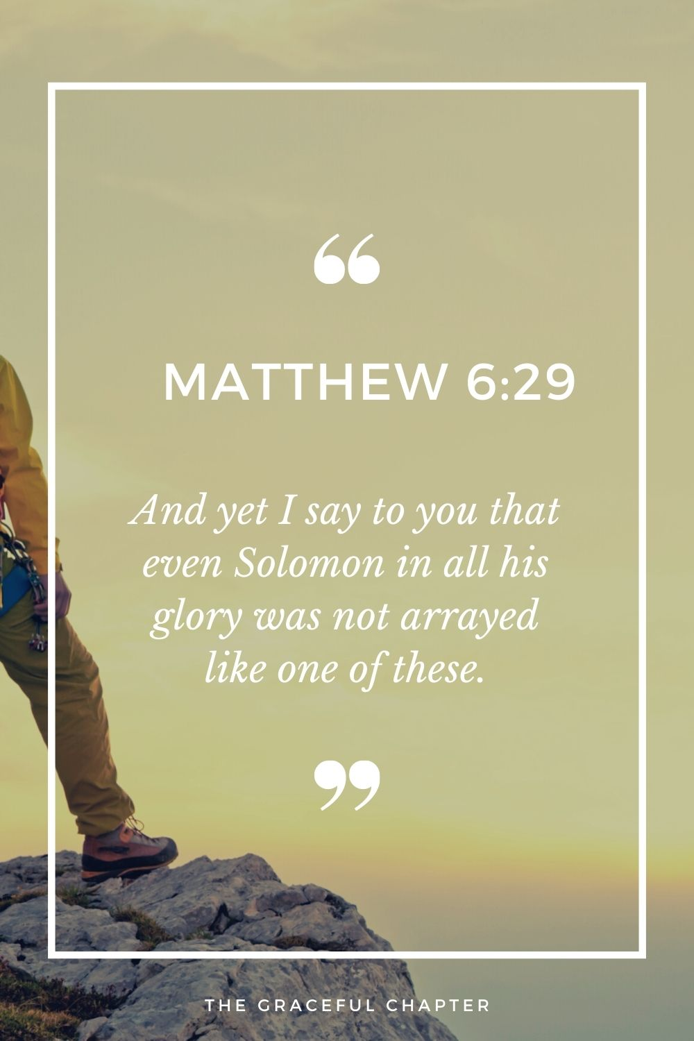 And yet I say to you that even Solomon in all his glory was not arrayed like one of these. Matthew 6:29