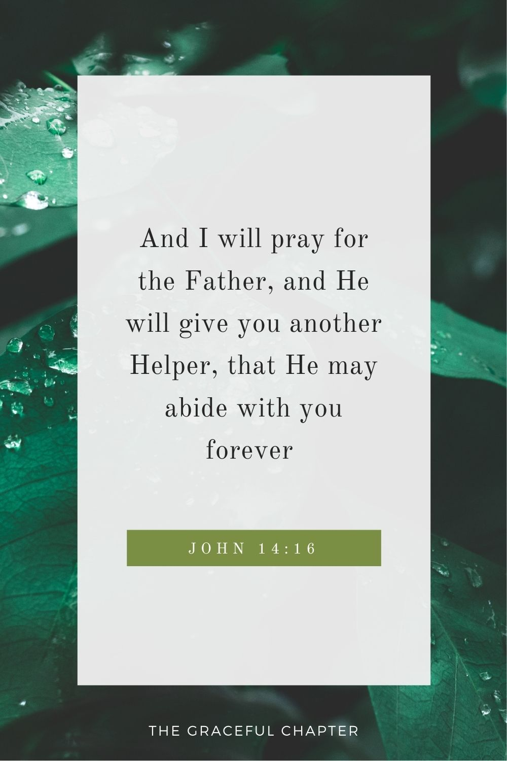 And I will pray for the Father, and He will give you another Helper, that He may abide with you forever  John 14:16