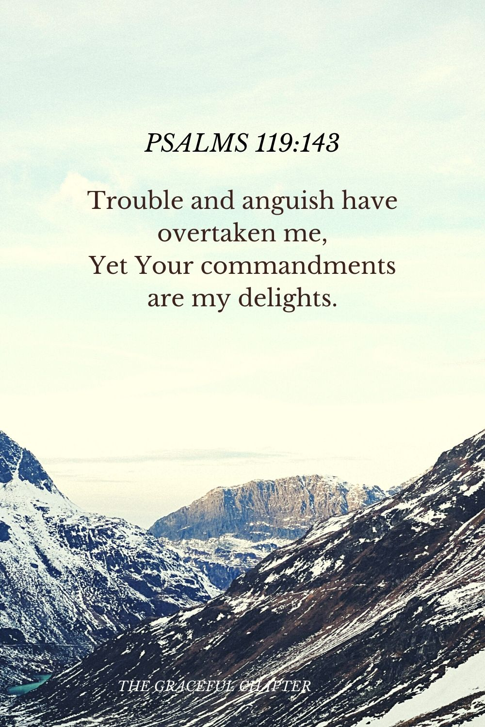 Trouble and anguish have overtaken me, Yet Your commandments are my delights.  Psalms 119:143