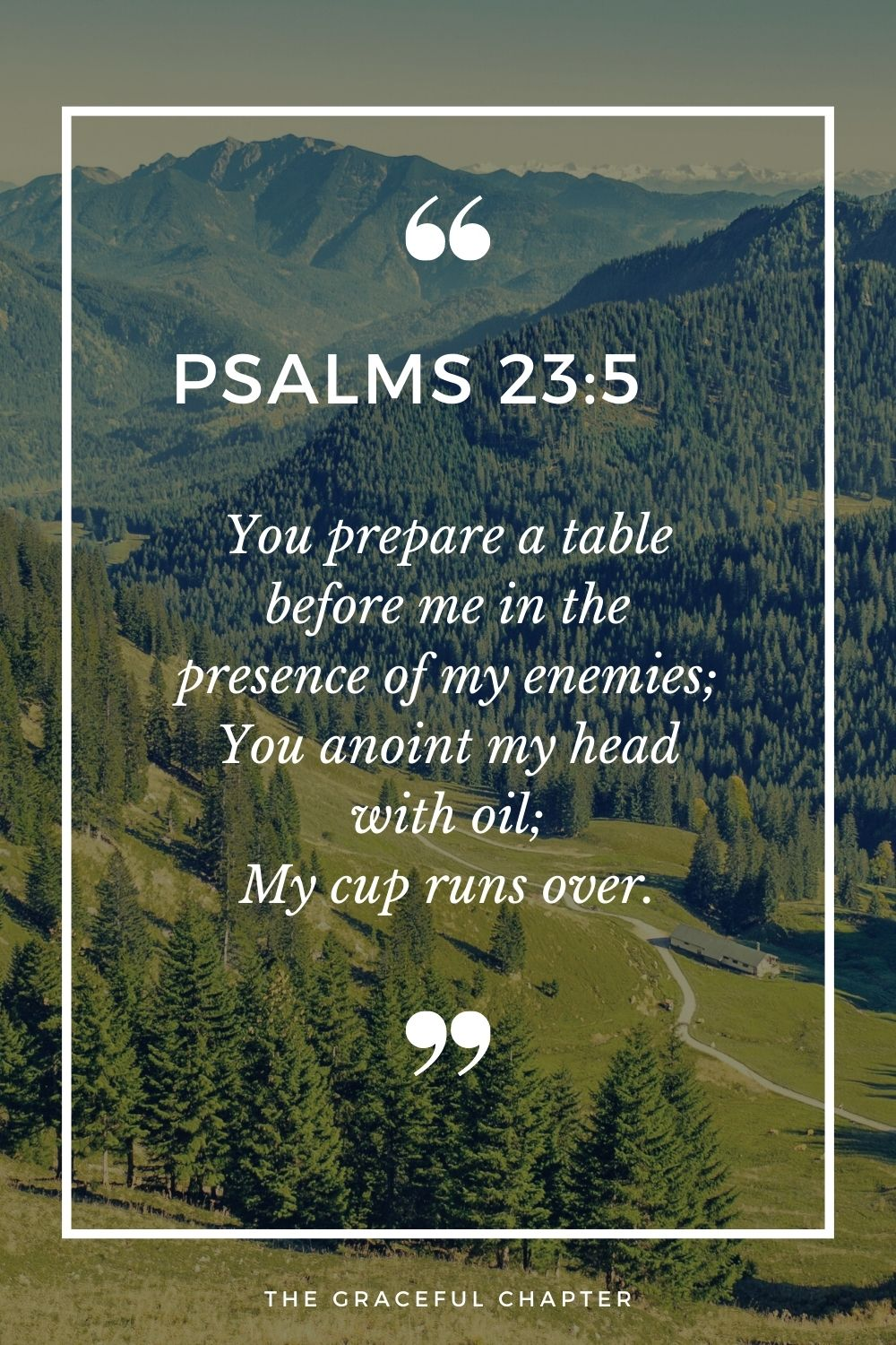 You prepare a table before me in the presence of my enemies; You anoint my head with oil; My cup runs over. Psalms 23:5