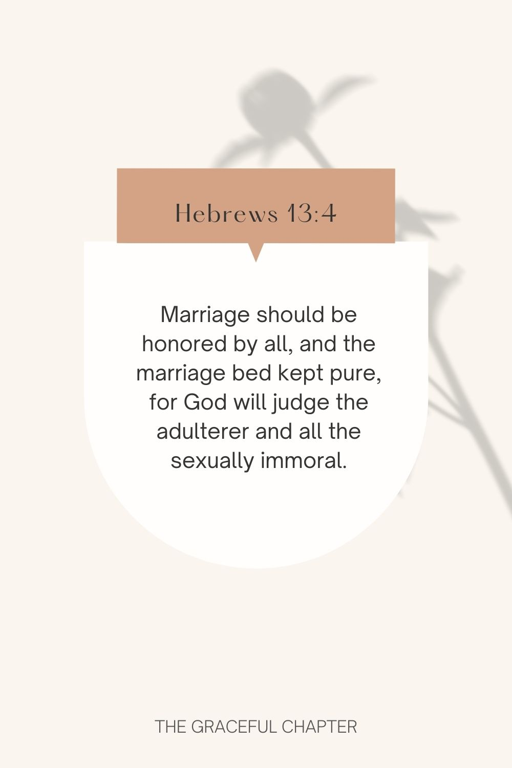Marriage should be honored by all, and the marriage bed kept pure, for God will judge the adulterer and all the sexually immoral. Hebrews 13:4