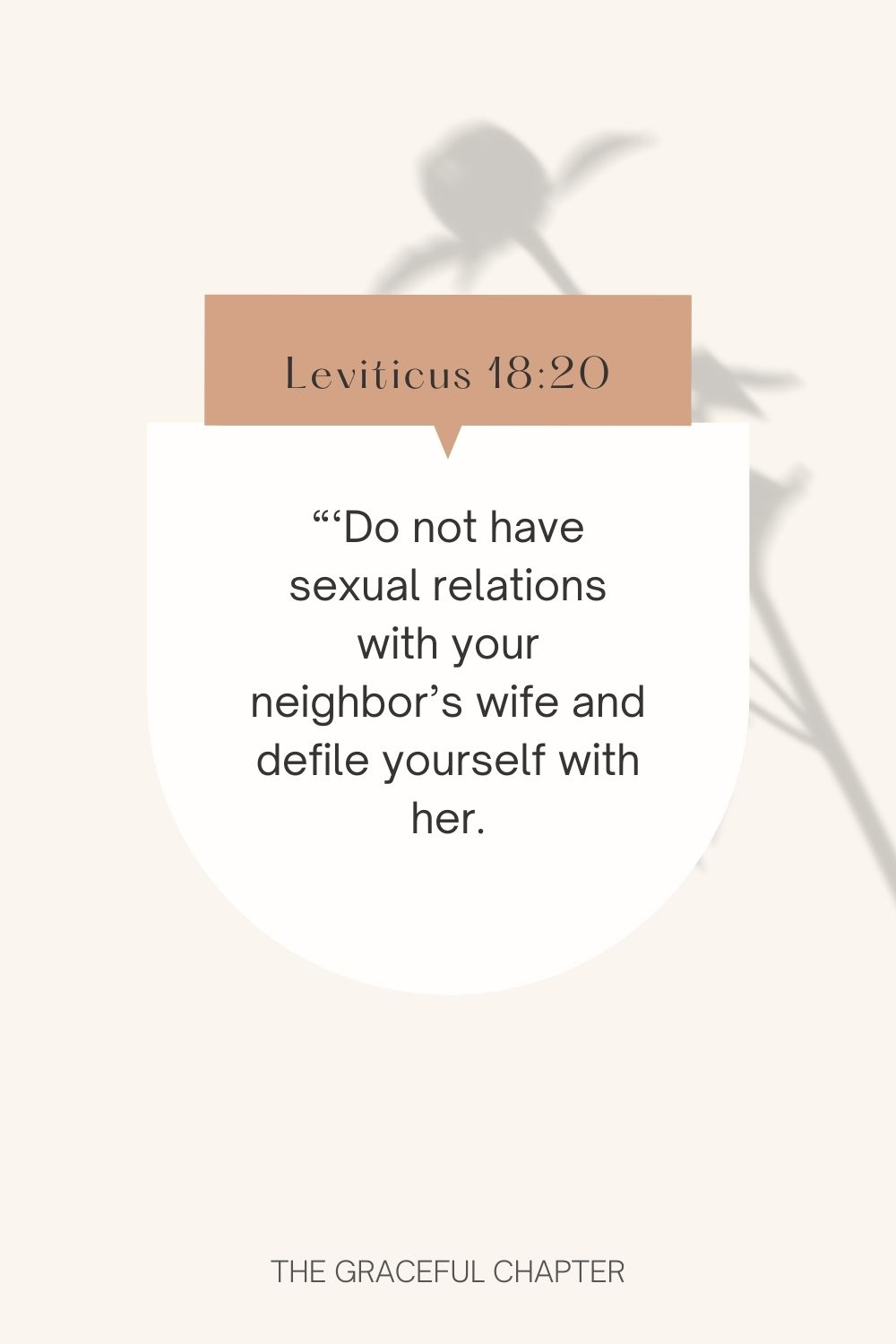 Do not have sexual relations with your neighbor's wife and defile yourself with her. Leviticus 18:20