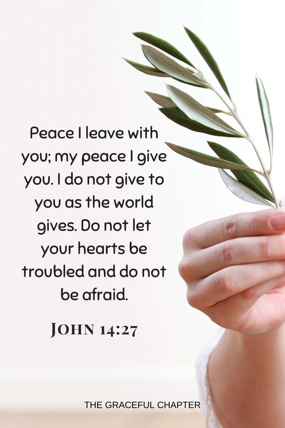 Peace I leave with you; my peace I give you. I do not give to you as the world gives. Do not let your hearts be troubled and do not be afraidPeace I leave with you; my peace I give you. I do not give to you as the world gives. Do not let your hearts be troubled and do not be afraid. John 14:27