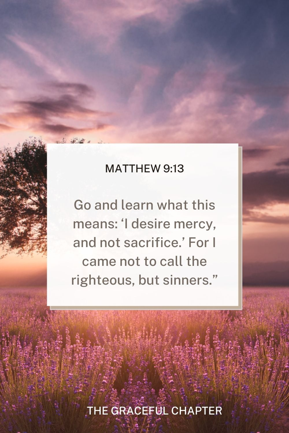 """Go and learn what this means: 'I desire mercy, and not sacrifice.' For I came not to call the righteous, but sinners."""" Matthew 9:13"""