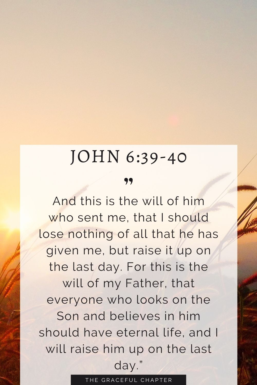 """And this is the will of him who sent me, that I should lose nothing of all that he has given me, but raise it up on the last day. For this is the will of my Father, that everyone who looks on the Son and believes in him should have eternal life, and I will raise him up on the last day."""" John 6:39-40"""